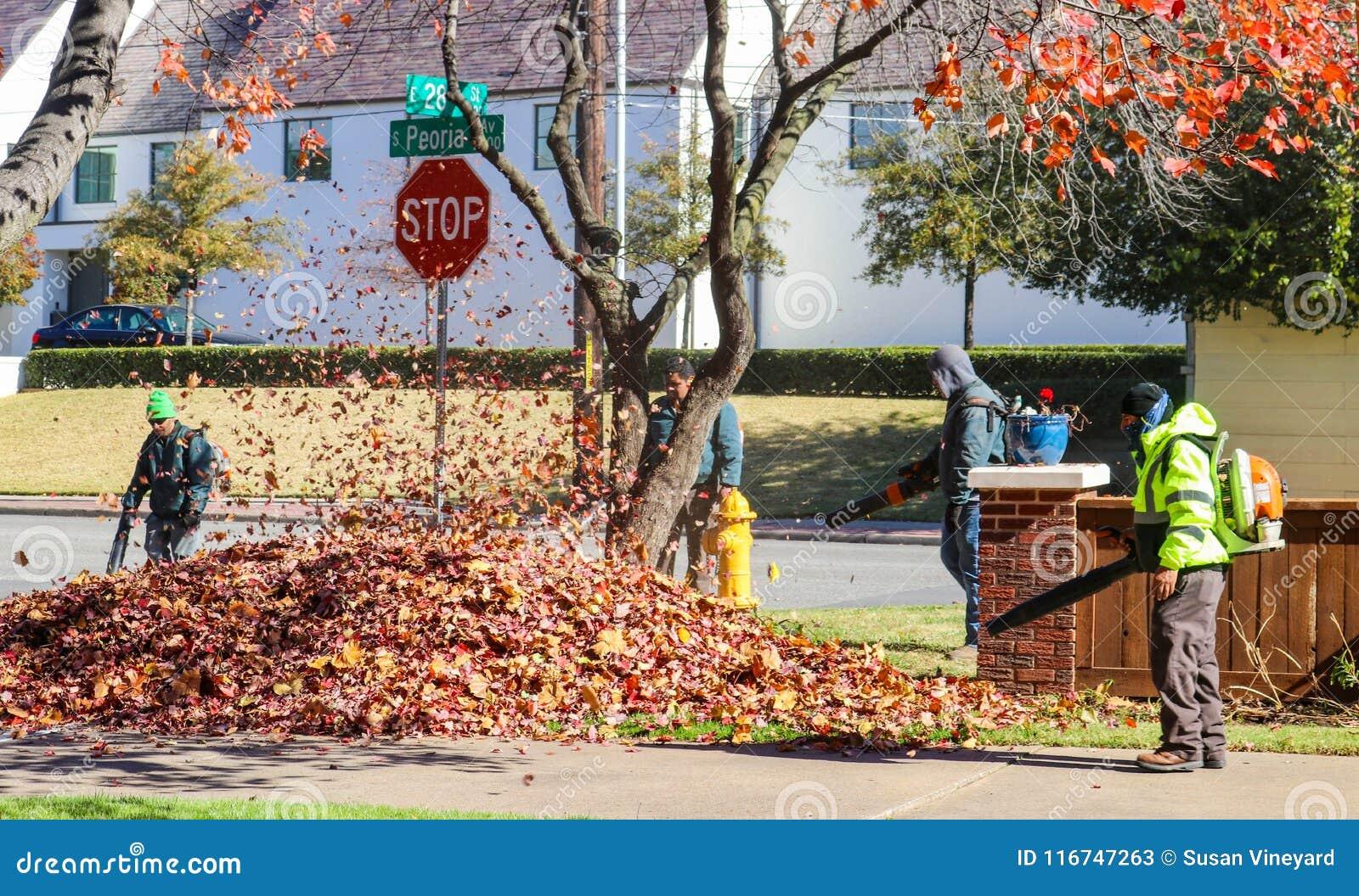 Πλήρωμα των εργαζομένων με τα σακίδια πλάτης και των σακακιών που φυσούν τα φύλλα σε έναν σωρό με τα φύλλα που στροβιλίζονται τον