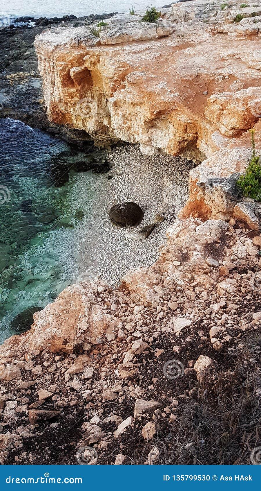 πνεύμα θάλασσας πανιών περιπέτειας κάτω