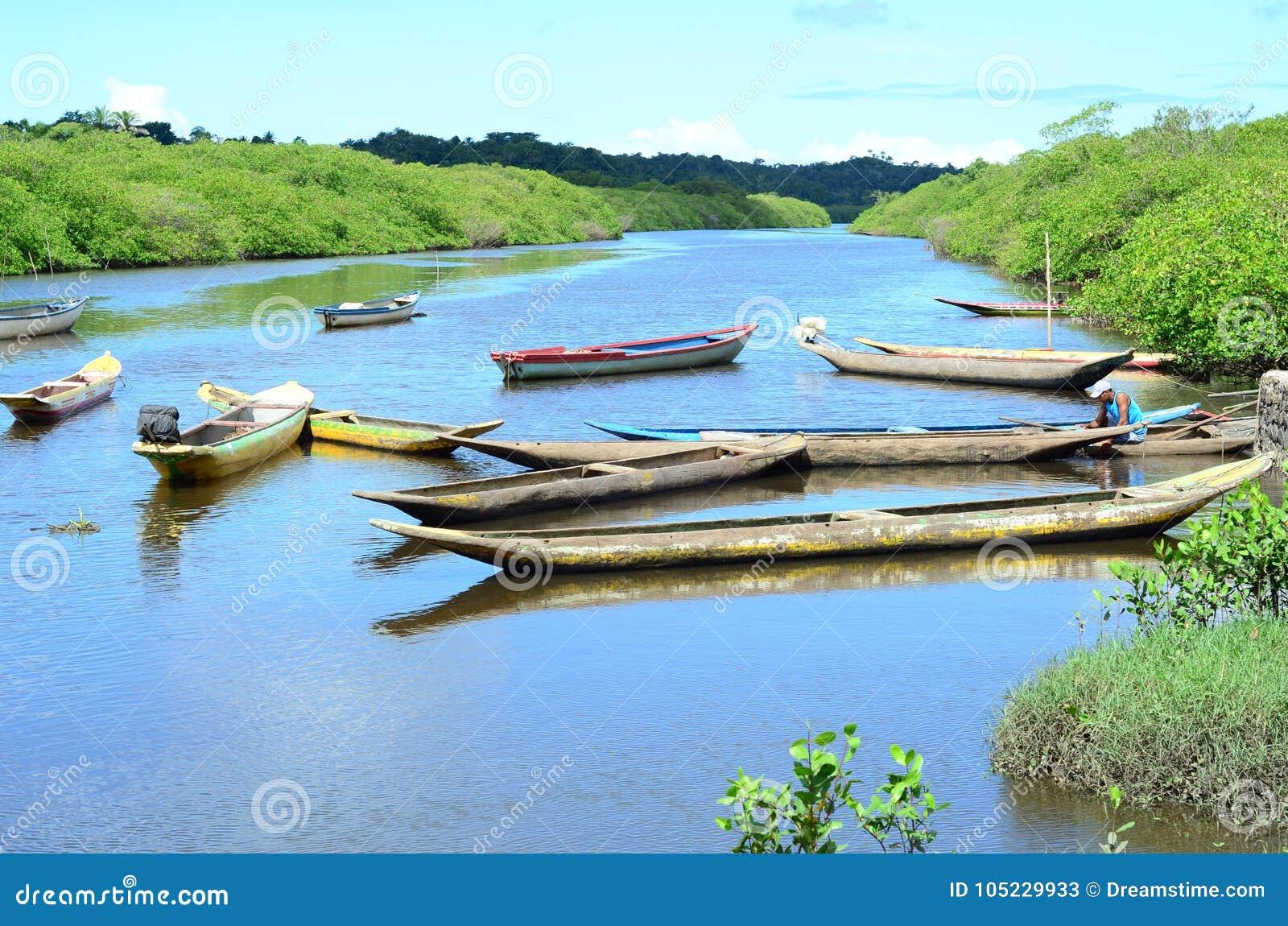 πολλά κανό στον ποταμό της Αμαζώνας