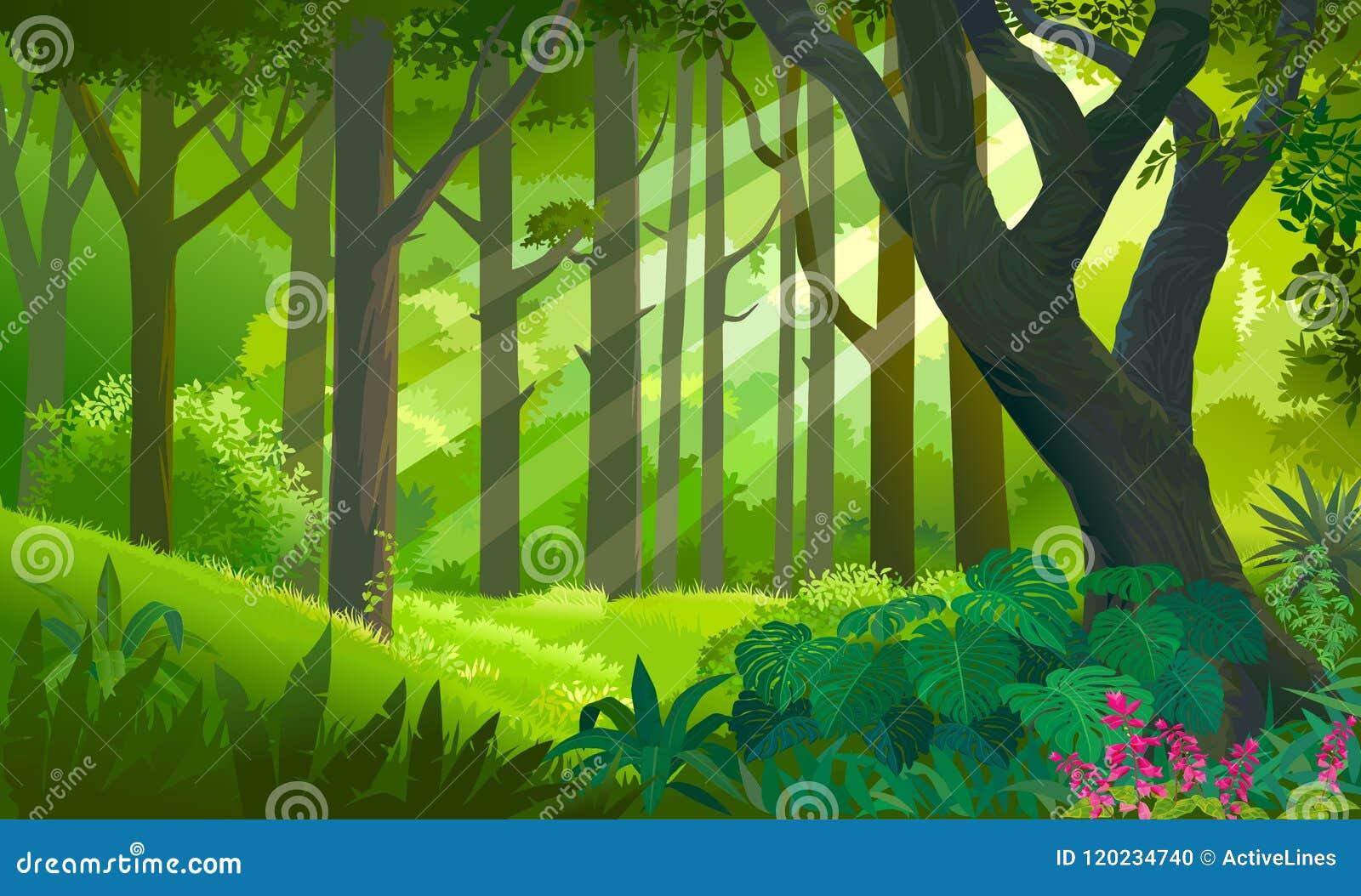 Πολύβλαστο πυκνό πράσινο δάσος με τις ακτίνες ήλιων σχετικά με τις εγκαταστάσεις και τα δέντρα