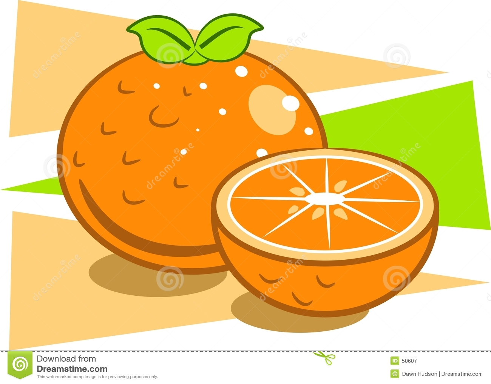 Download πορτοκάλια διανυσματική απεικόνιση. εικονογραφία από απεικονίσεις - 50607