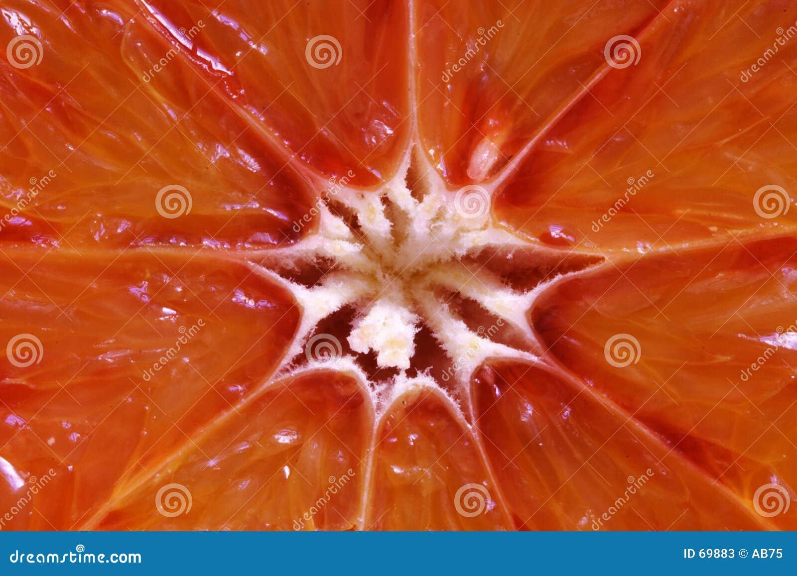 πορτοκάλι αίματος
