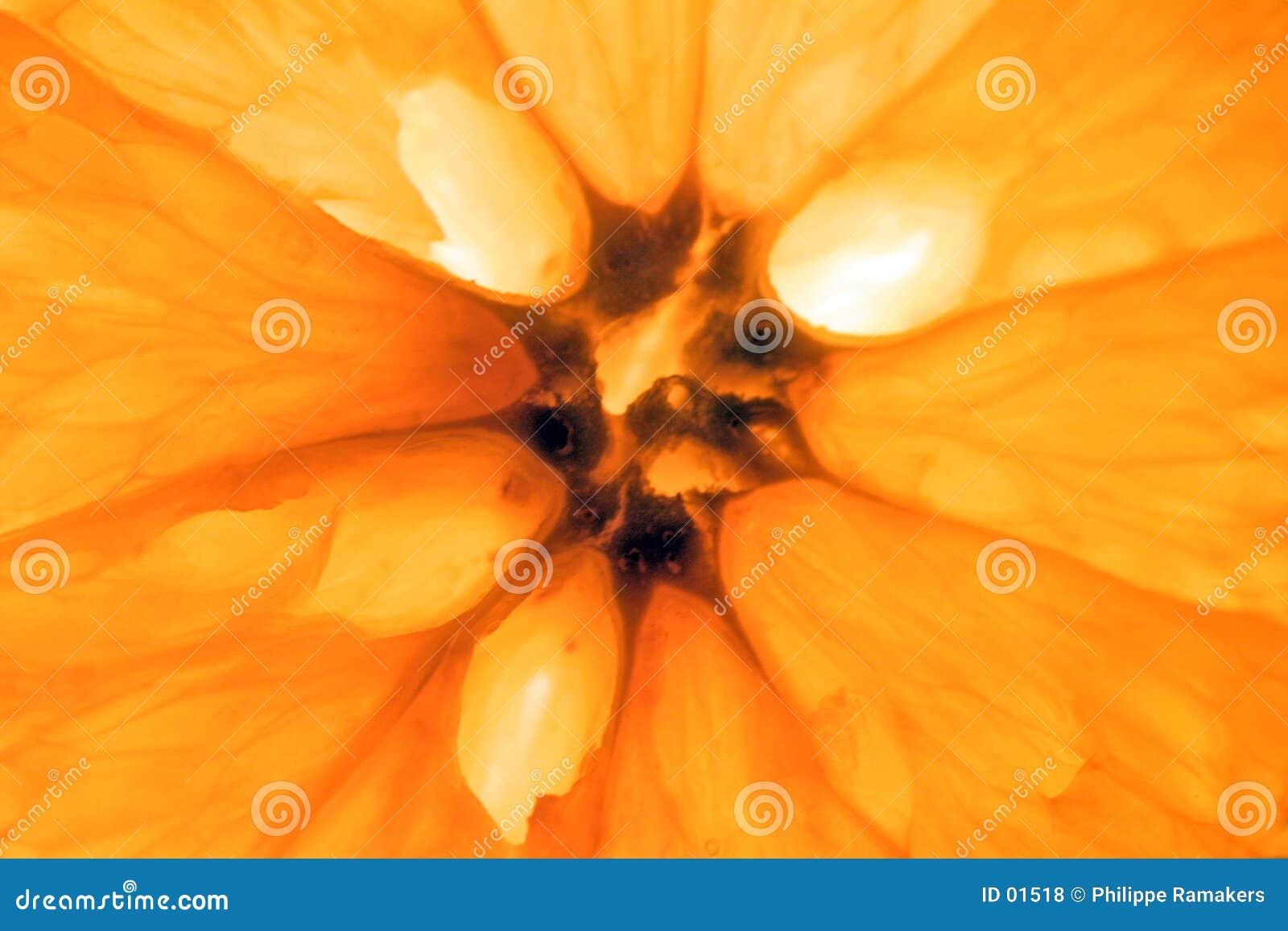 πορτοκάλι καρπού