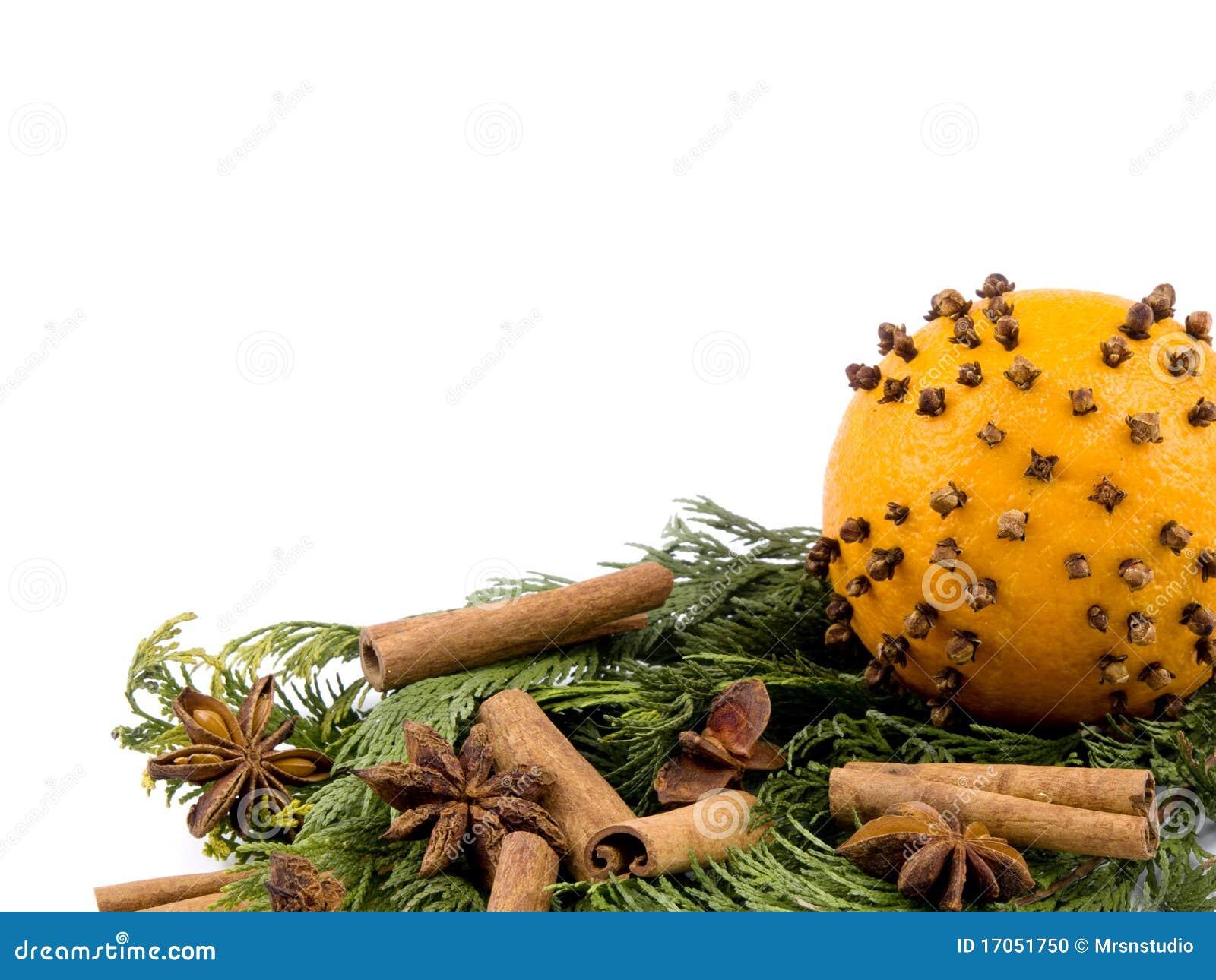 πορτοκαλί thuja καρυκευμάτ&omeg