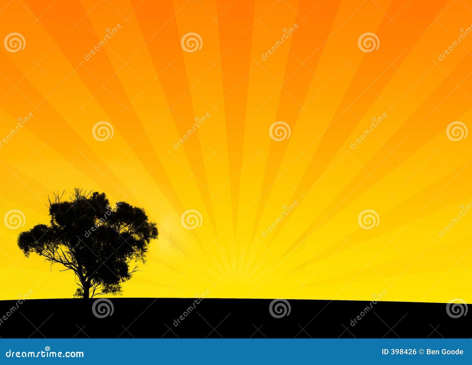 πορτοκαλιά σκιαγραφία θά