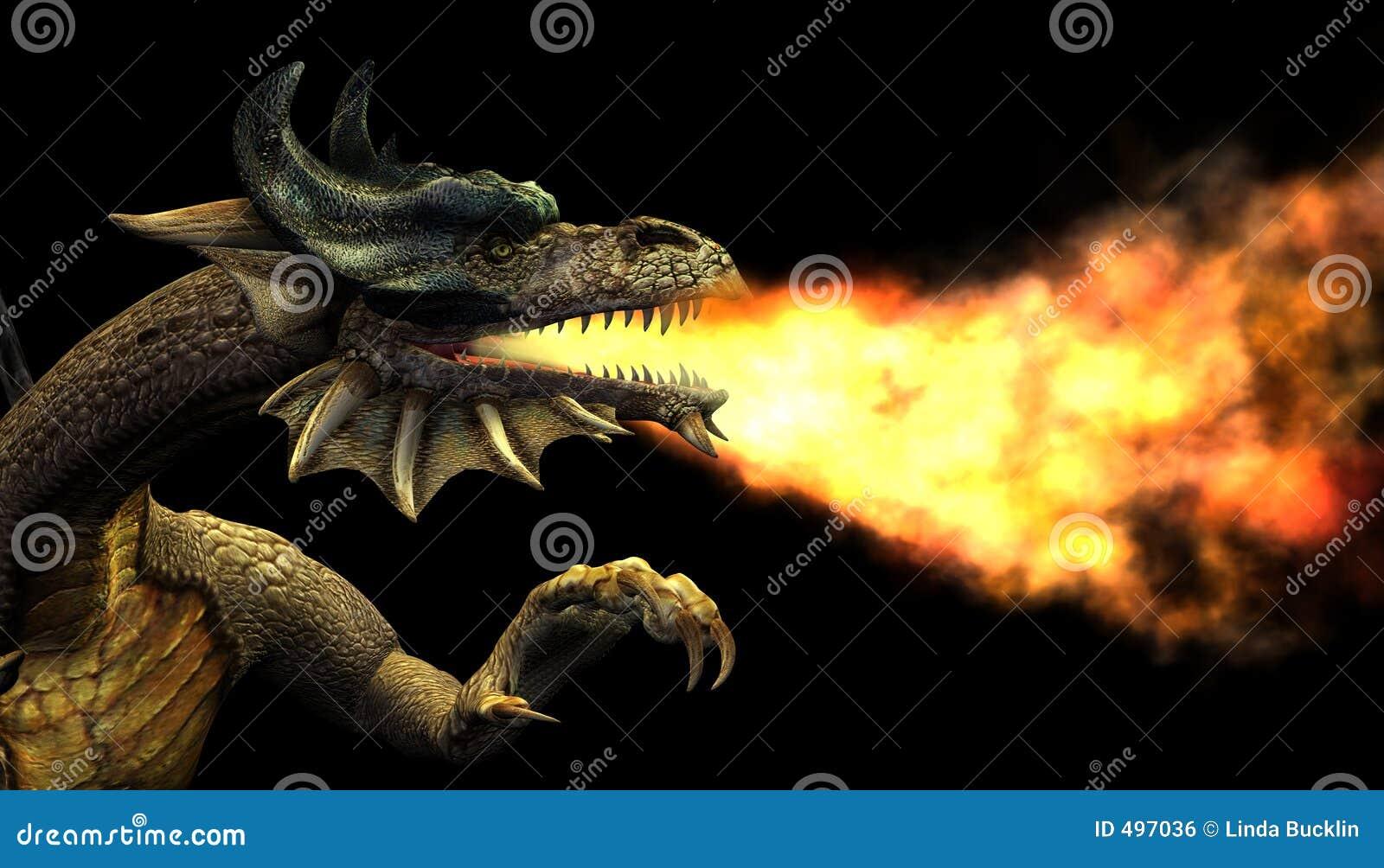 πορτρέτο πυρκαγιάς δράκων