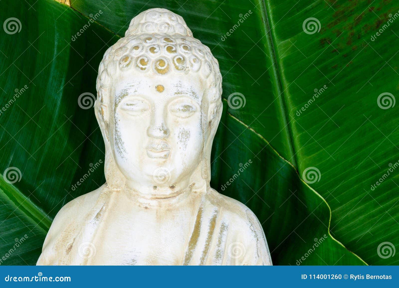 Πορτρέτο του αγάλματος του Βούδα με τα φρέσκα πράσινα φύλλα μπανανών στην επιφάνεια υποβάθρου με ελεύθερου χώρου