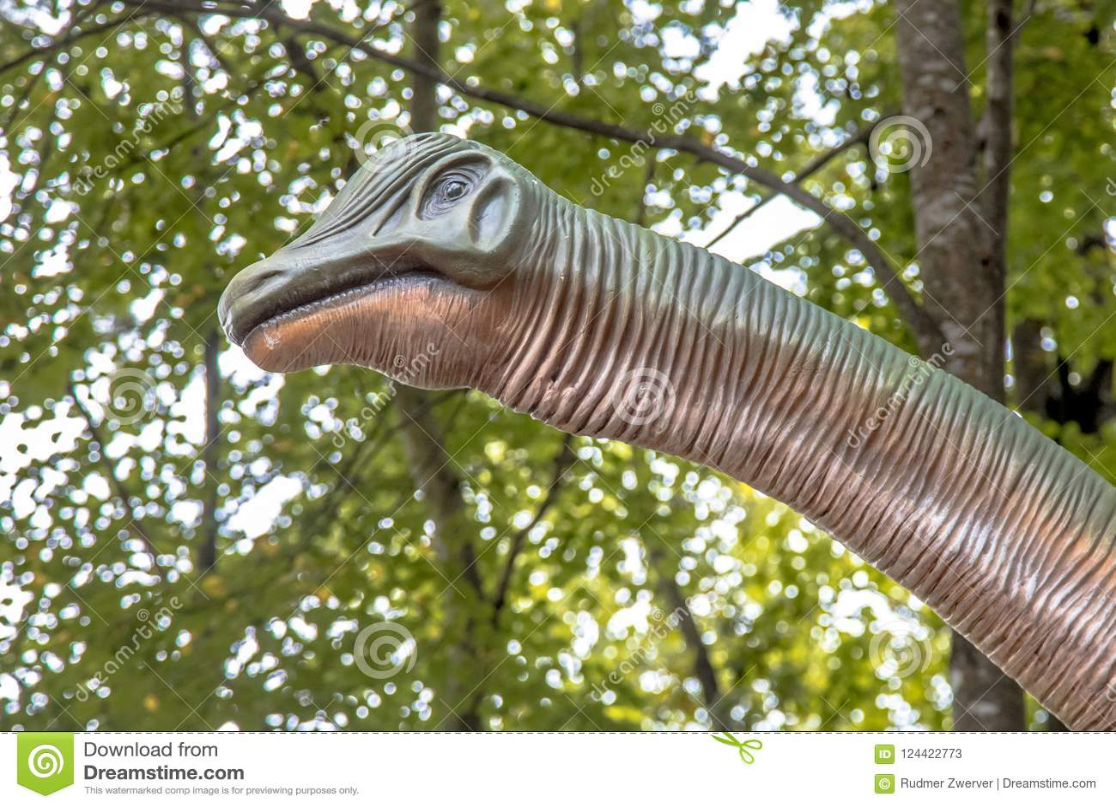 Πορτρέτο Brontosaurus