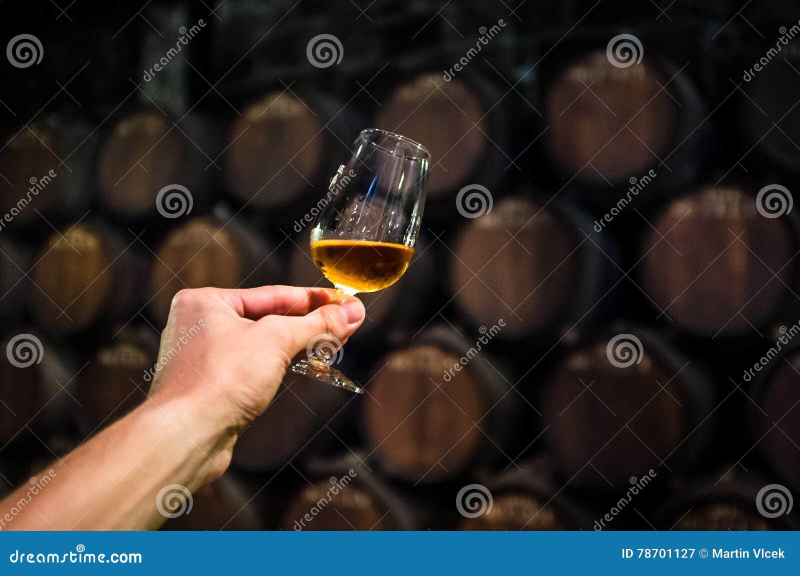 Ποτήρι του κρασιού στο κελάρι κρασιού