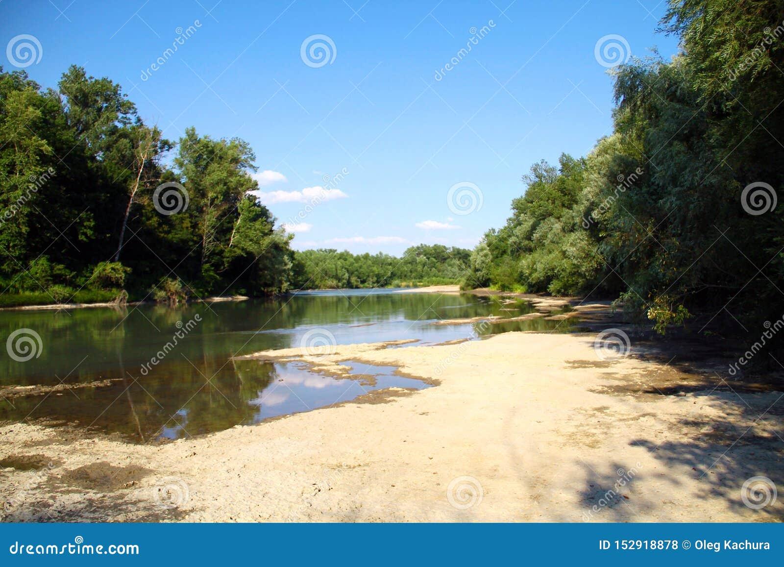Ποταμός βουνών που διατρέχει του πράσινου δάσους