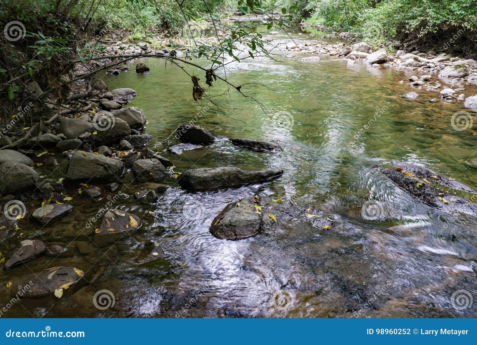 Ποταμός γυρολόγων, κομητεία Amherst, Βιρτζίνια, ΗΠΑ - 3