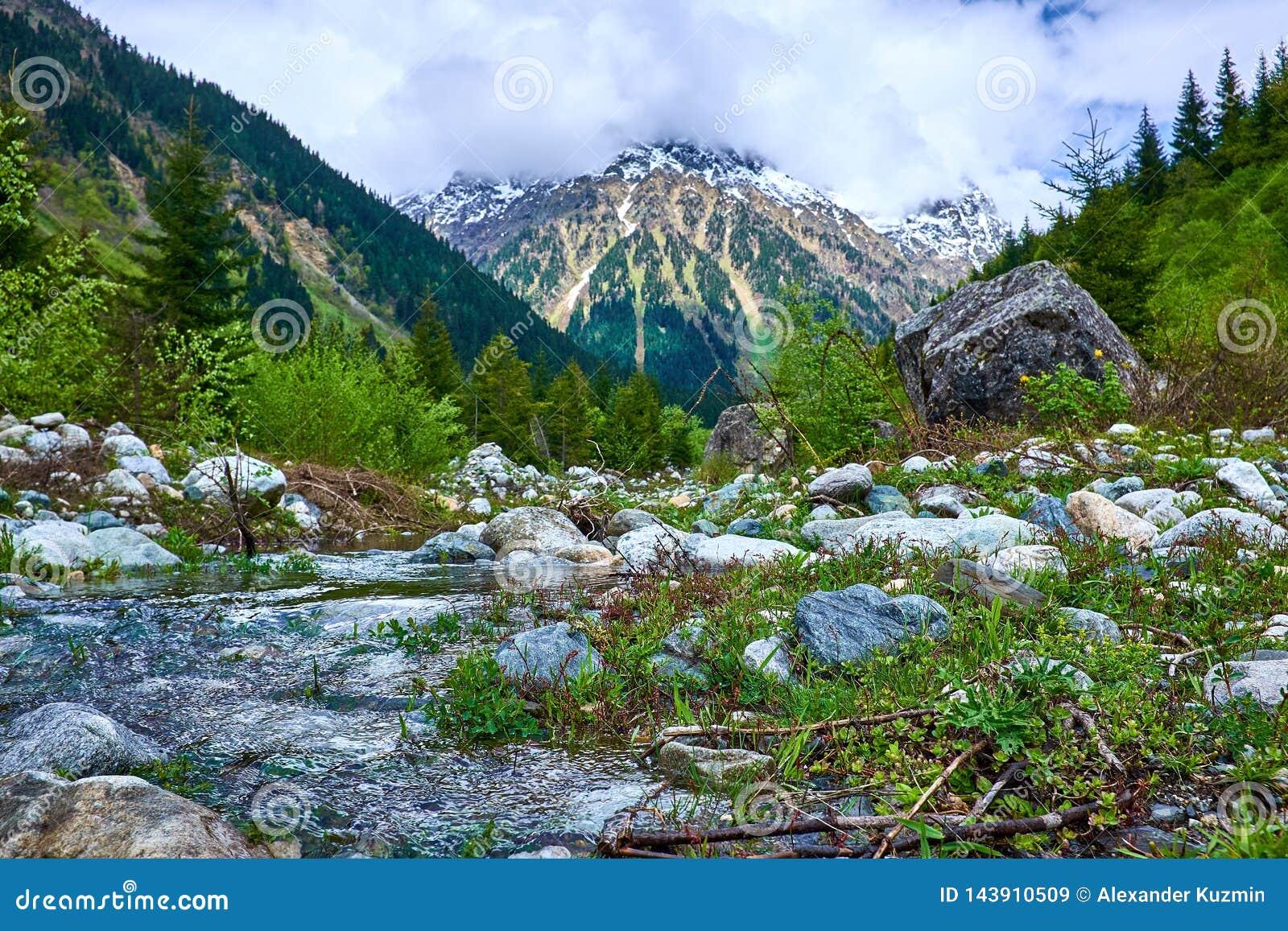 Ποταμός στα βουνά Svaneti την άνοιξη
