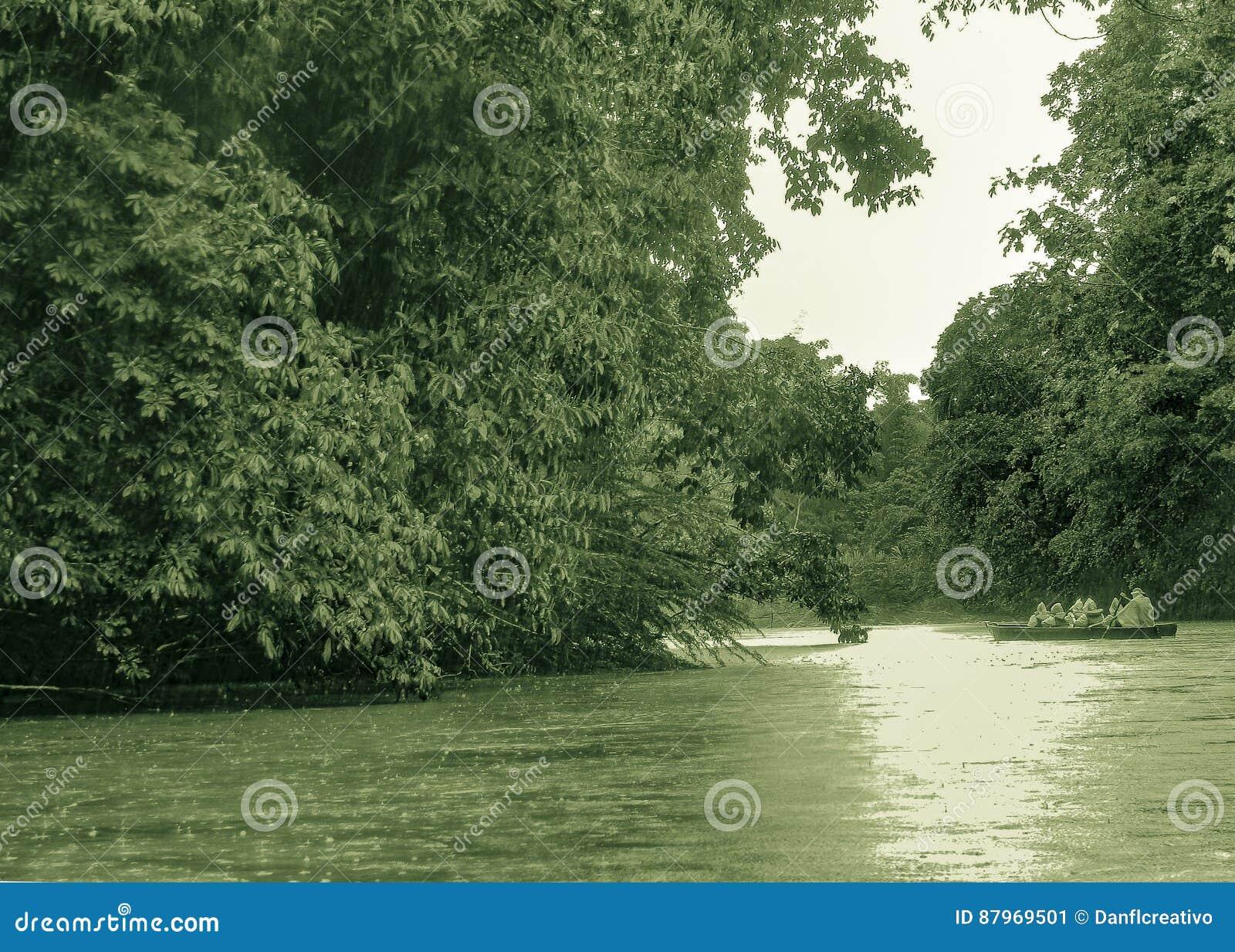 Ποταμός στην Αμαζονία σε Puyo, Ισημερινός