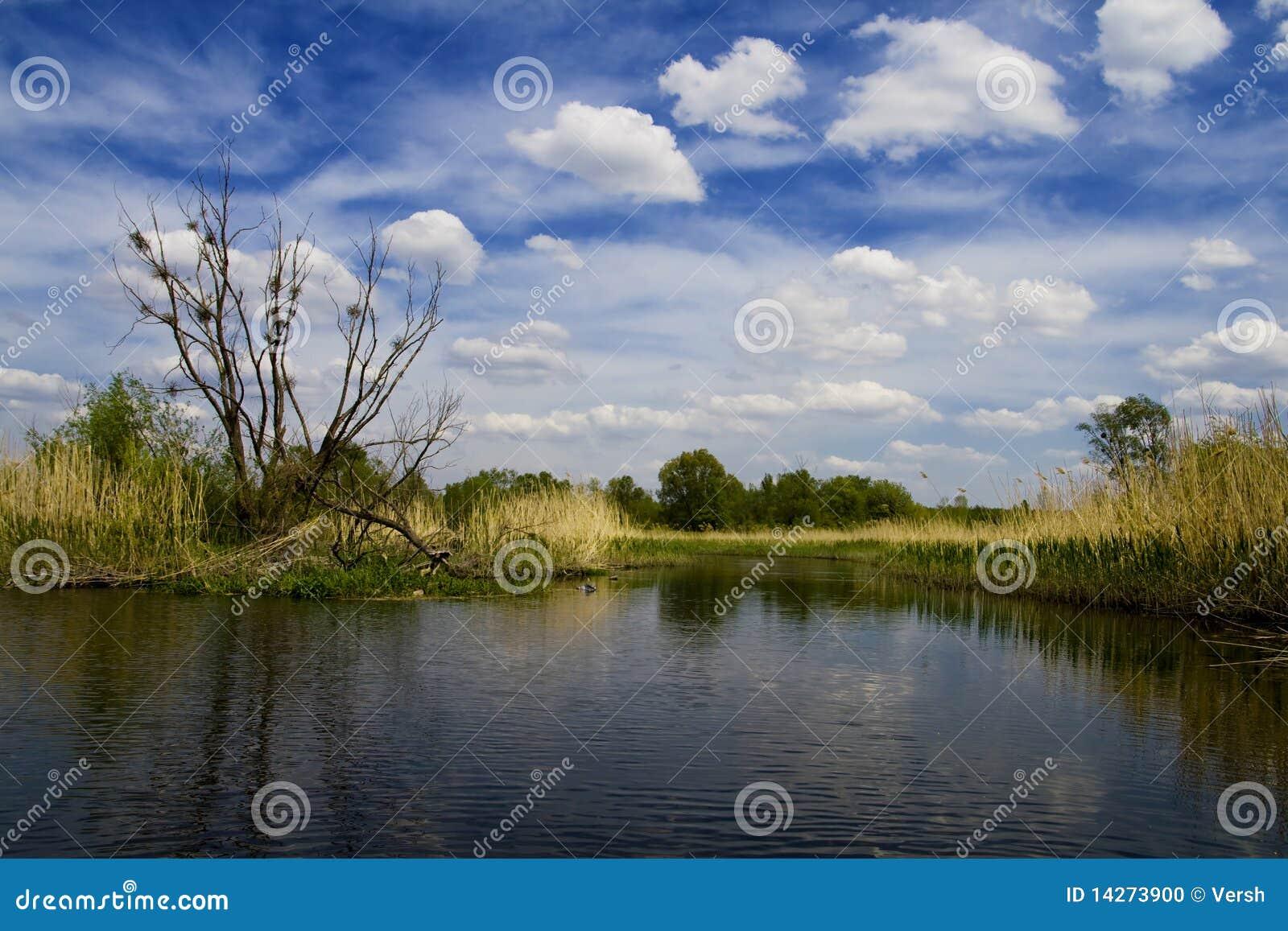 ποταμός τοπίων ros