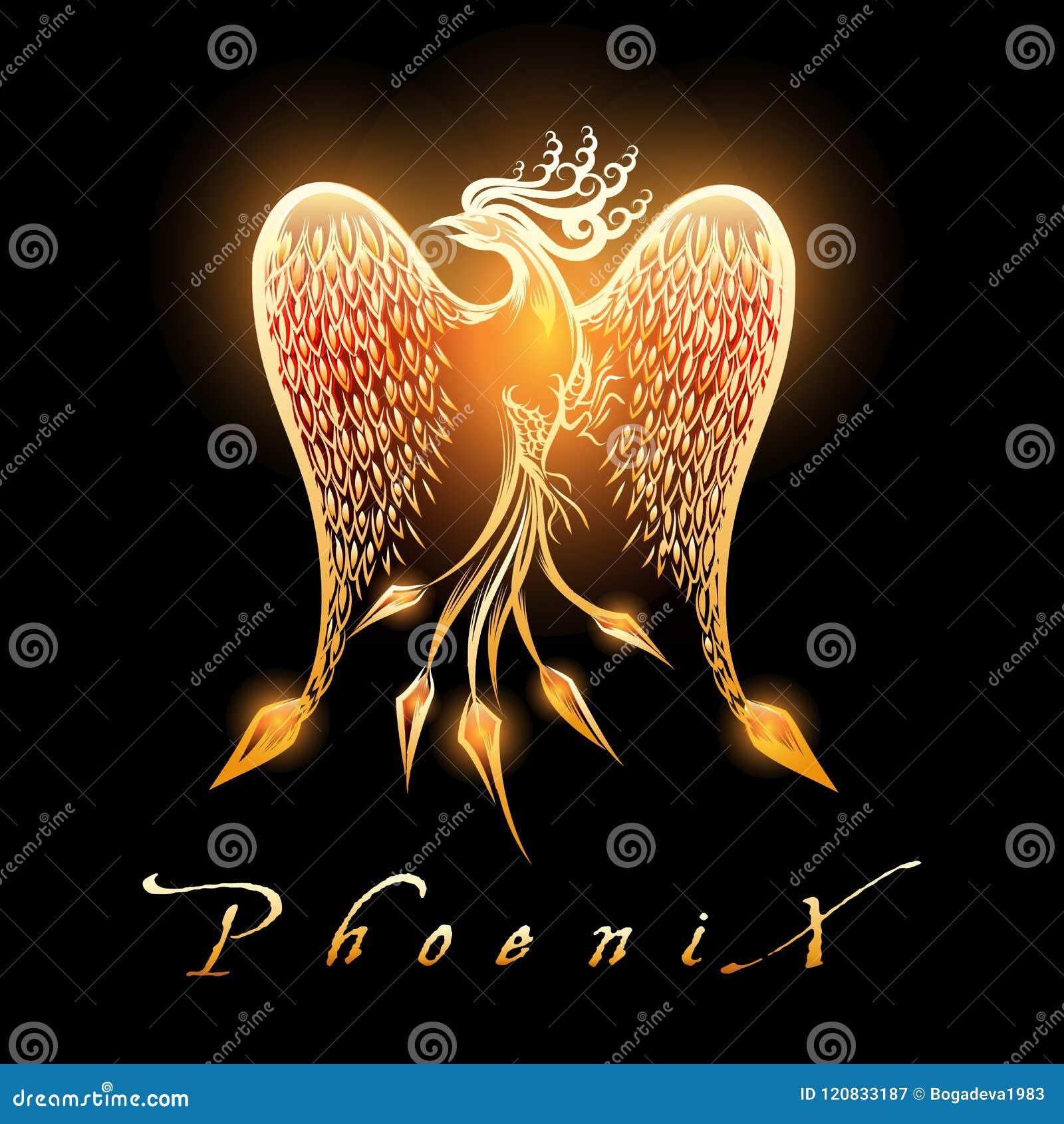 Πουλί καψίματος Phoenix στο μαύρο υπόβαθρο
