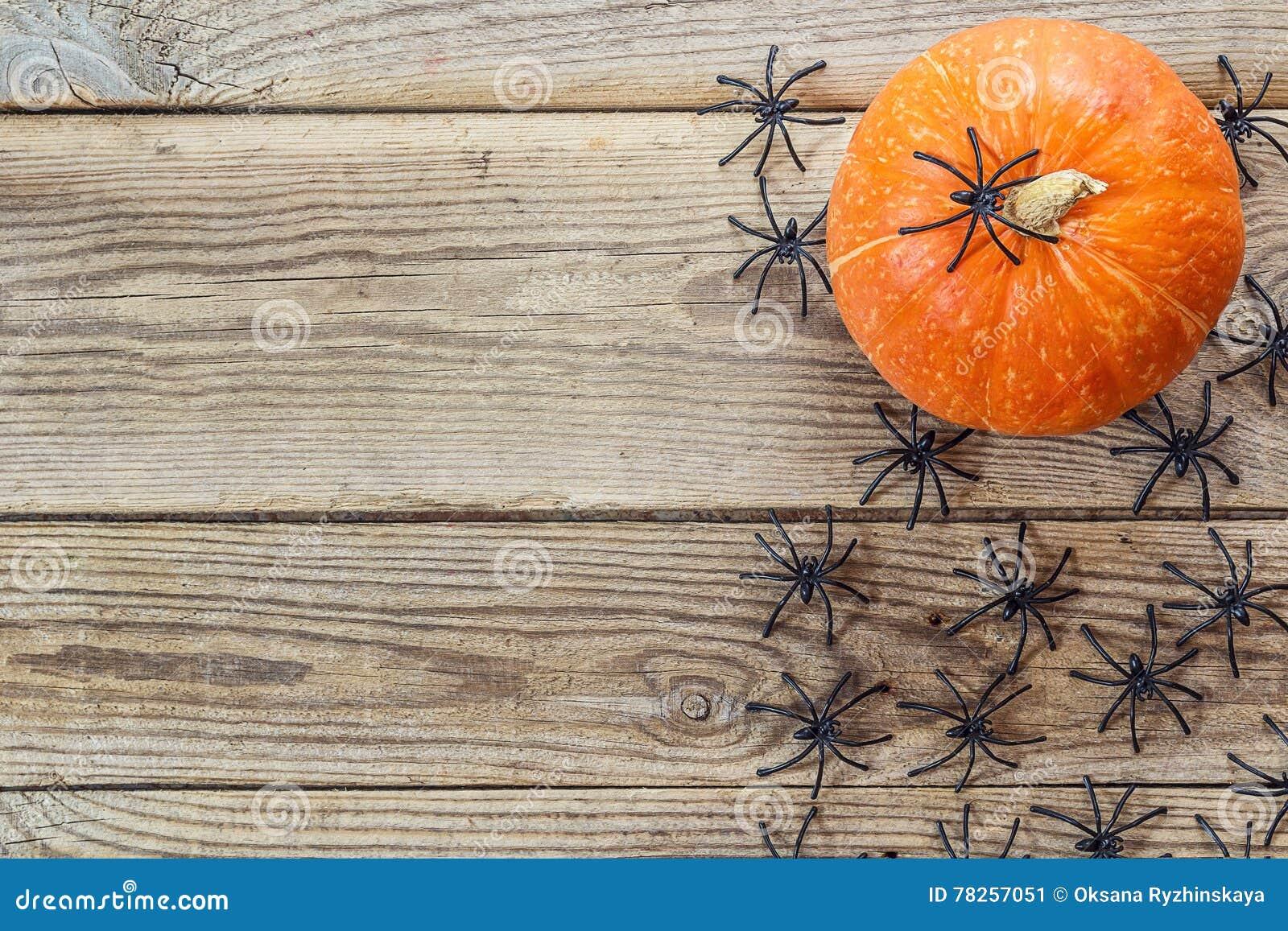 Πολλές μαύρες αράχνες και μικρή κολοκύθα στους παλαιούς ξύλινους πίνακες Β