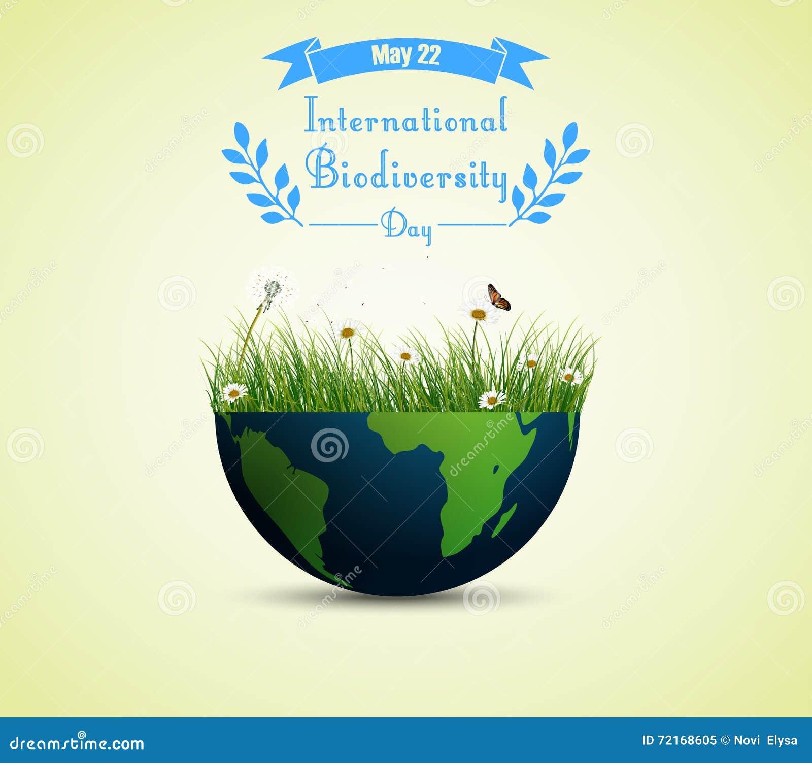 Πράσινα χλόη και λουλούδια μέσα στη γη για το διεθνές υπόβαθρο ημέρας βιοποικιλότητας