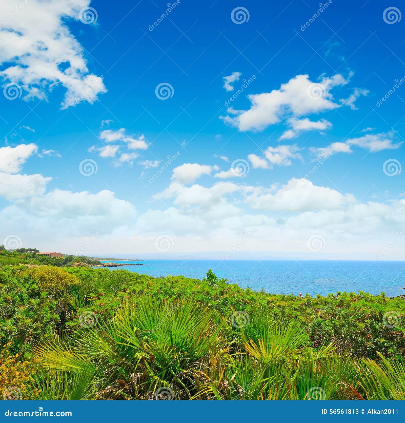 Πράσινες εγκαταστάσεις από την ακτή σε Alghero