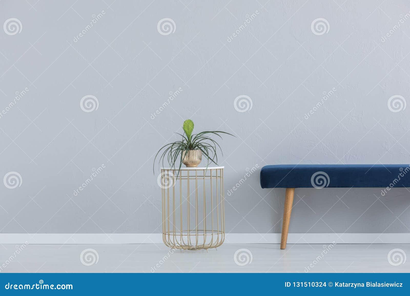 Πράσινες εγκαταστάσεις στο χρυσό δοχείο και μπλε καναπές βελούδου, πραγματική φωτογραφία με το διάστημα αντιγράφων