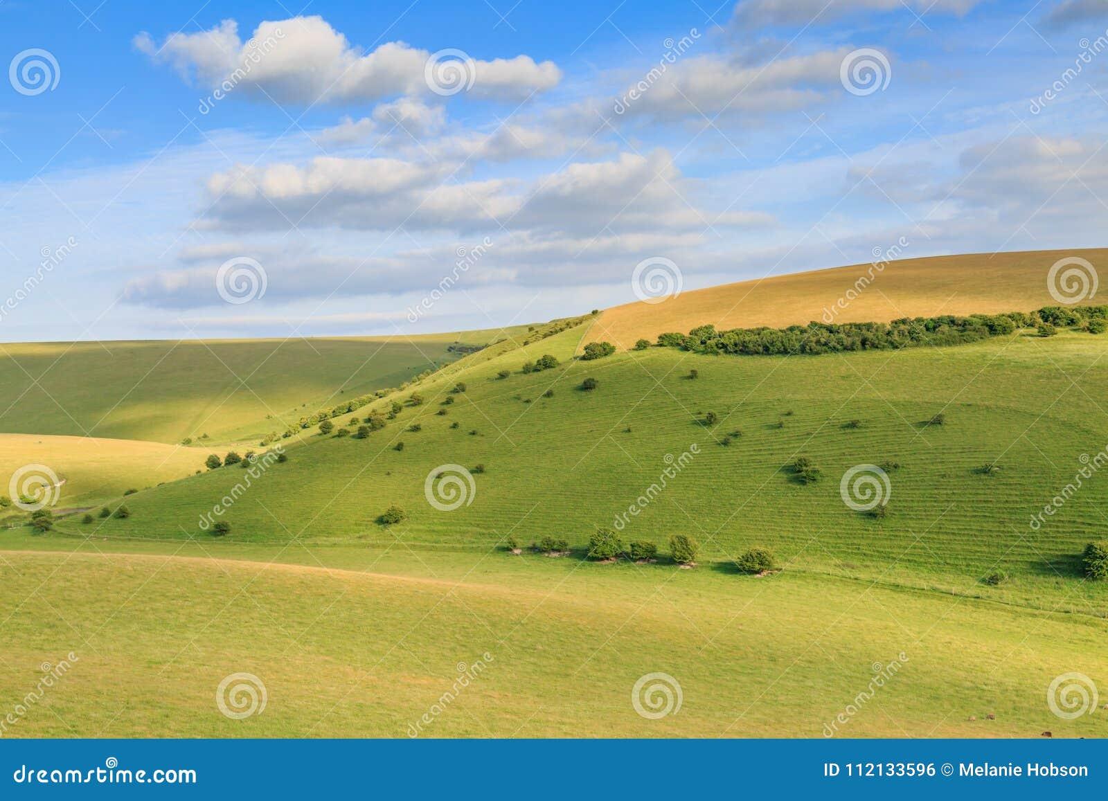 Πράσινοι λόφοι στο Σάσσεξ