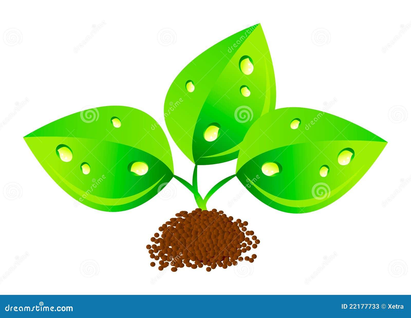 πράσινος βγάζει φύλλα το &del