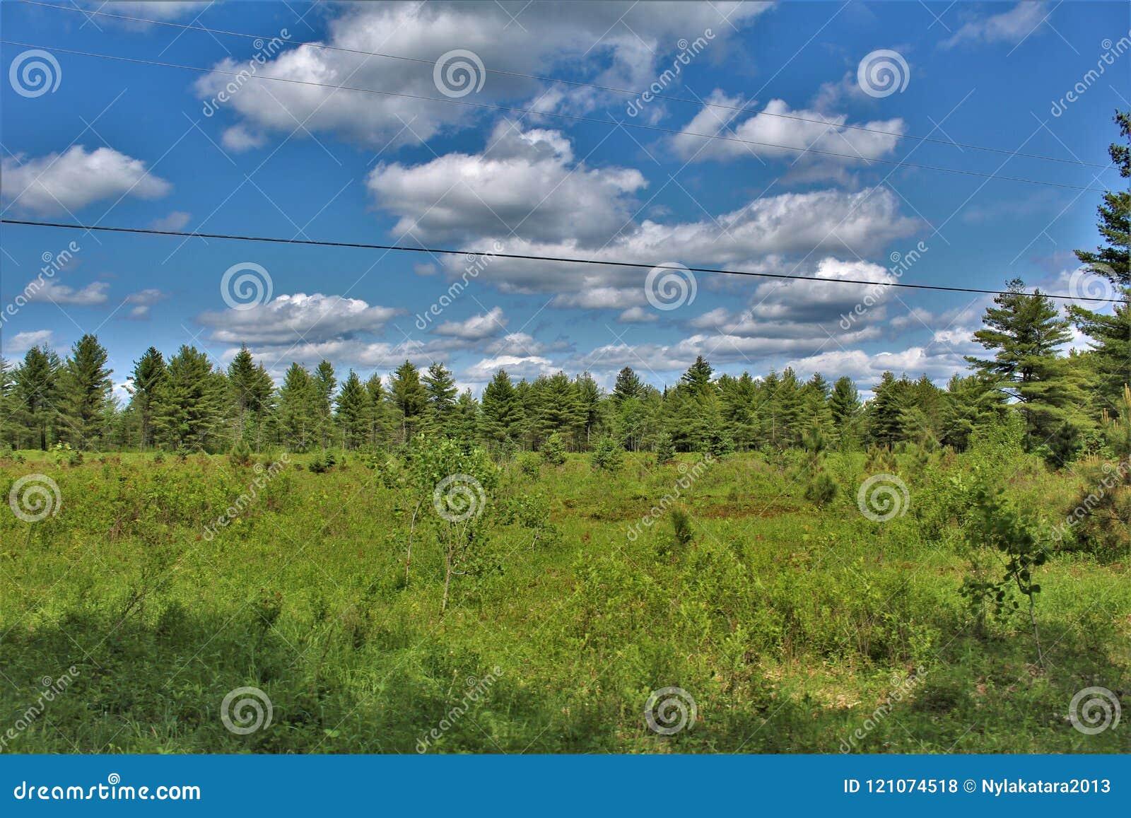 Πράσινος τομέας εντοπίζω σε Childwold, Νέα Υόρκη, Ηνωμένες Πολιτείες