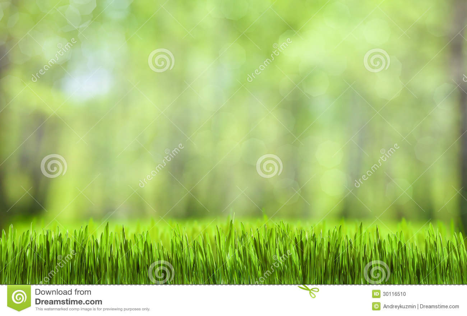 Πράσινο υπόβαθρο φύσης χλόης αφηρημένο