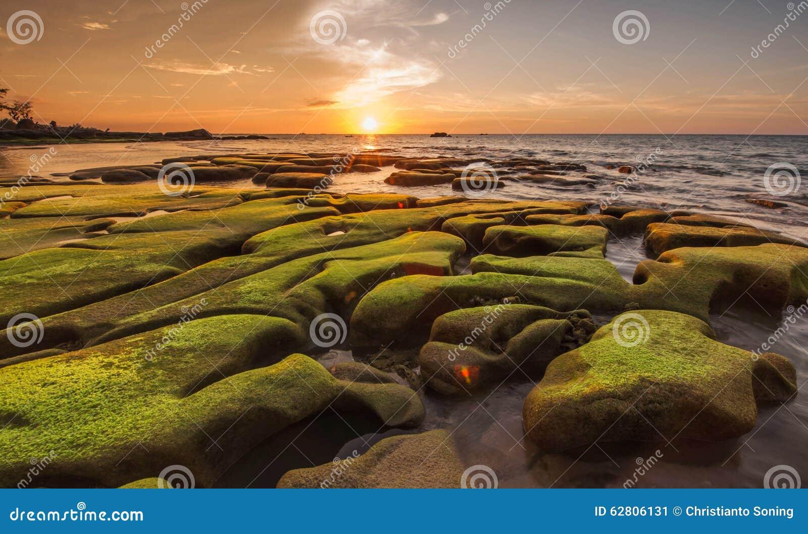 Πράσινο βρύο στο μοναδικούς σχηματισμό βράχου και το υπόβαθρο ηλιοβασιλέματος
