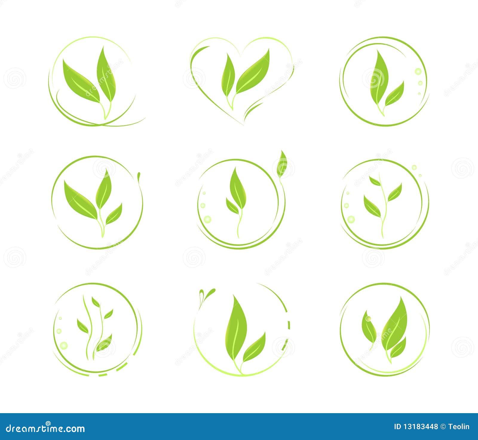πράσινο διάνυσμα φύλλων στ&