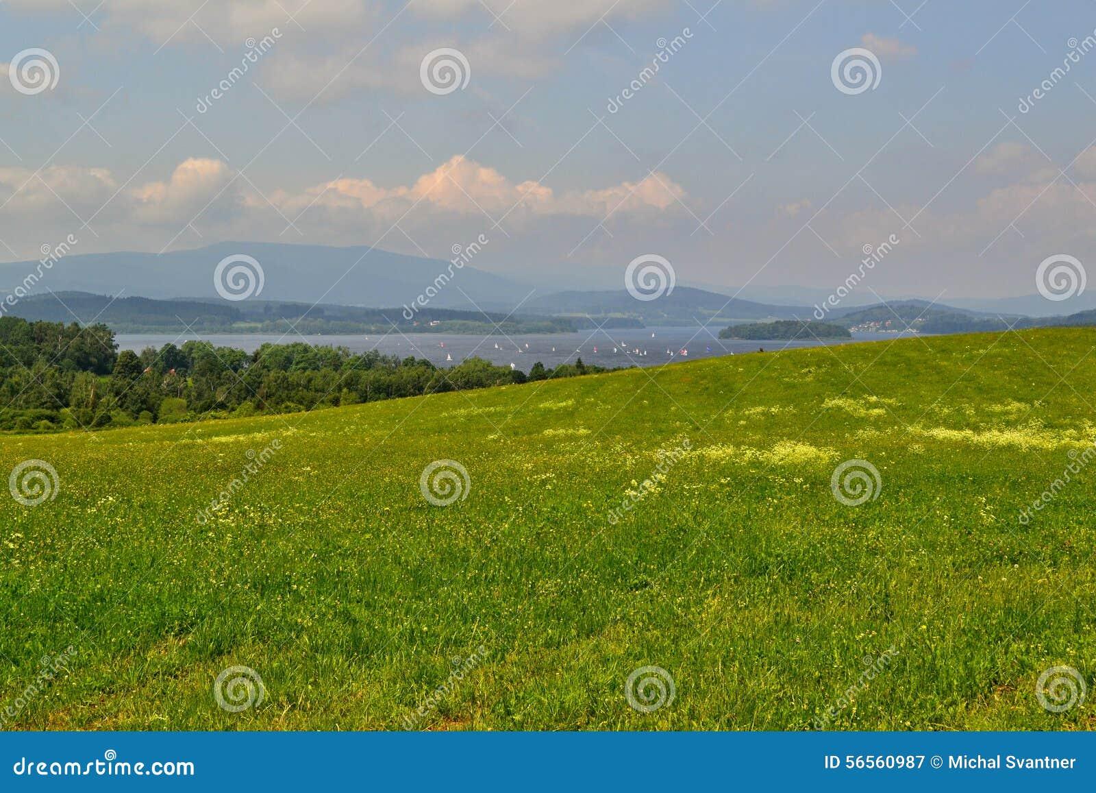 Download Πράσινο λιβάδι με μια λίμνη στο υπόβαθρο Στοκ Εικόνα - εικόνα από ουρανός, νομός: 56560987