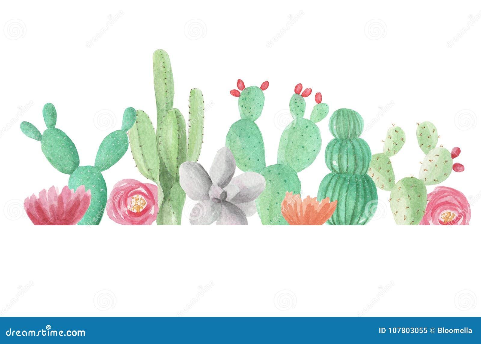 Πράσινο καλοκαίρι γαμήλιας άνοιξης πλαισίων Succulents κάκτων κάκτων συνόρων Watercolor