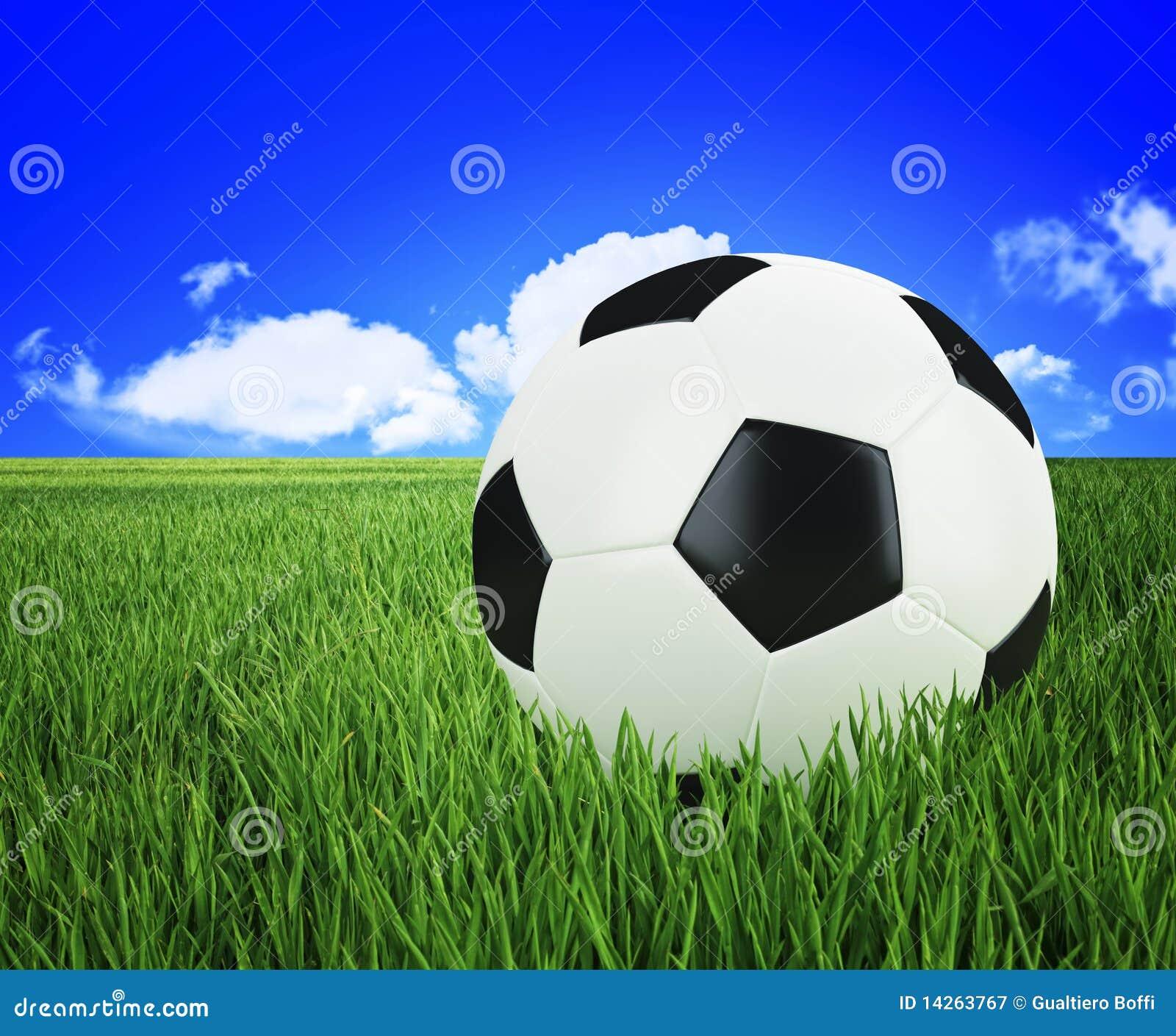 πράσινο ποδόσφαιρο χλόης &sig