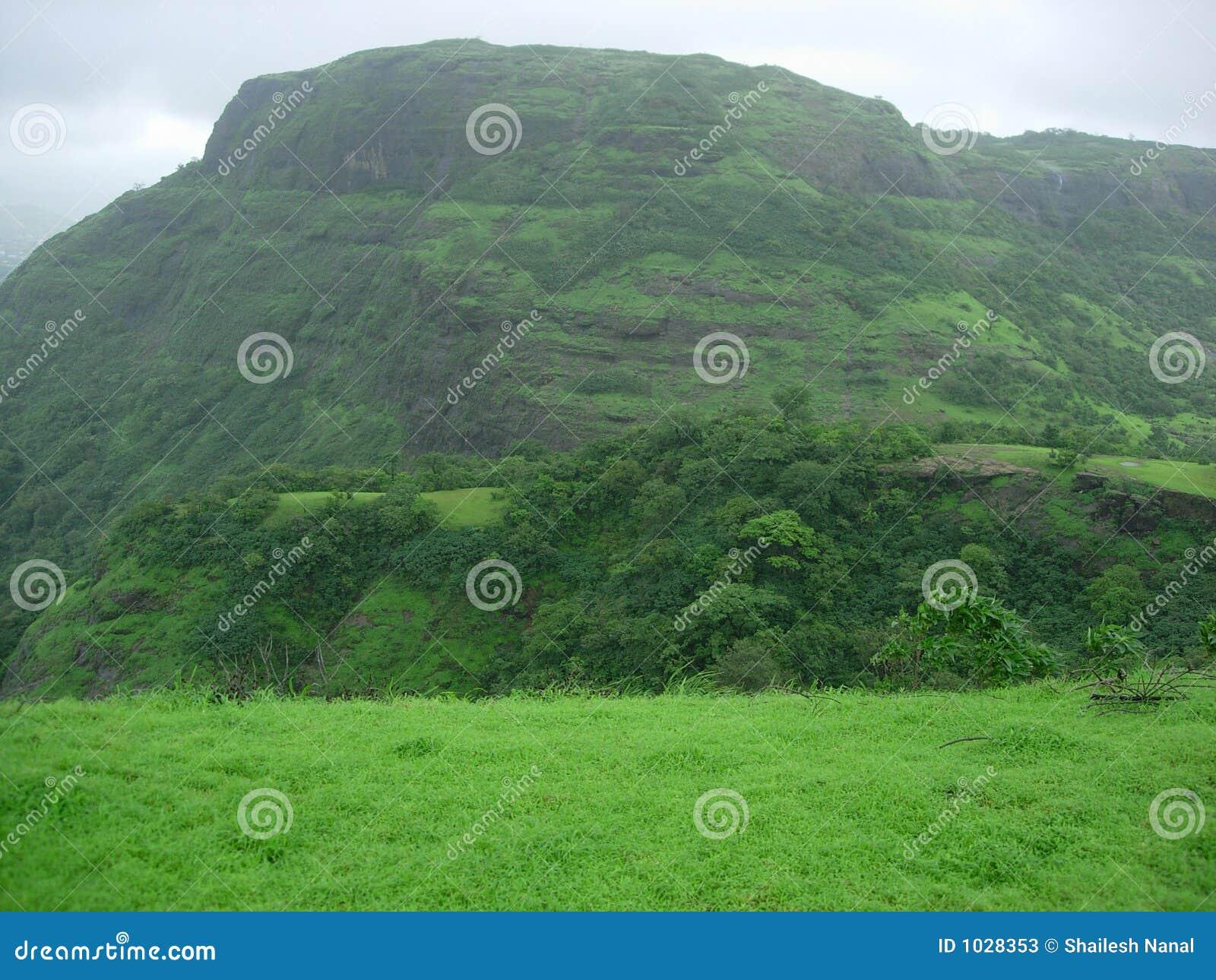 πράσινο τοπίο επαρχίας