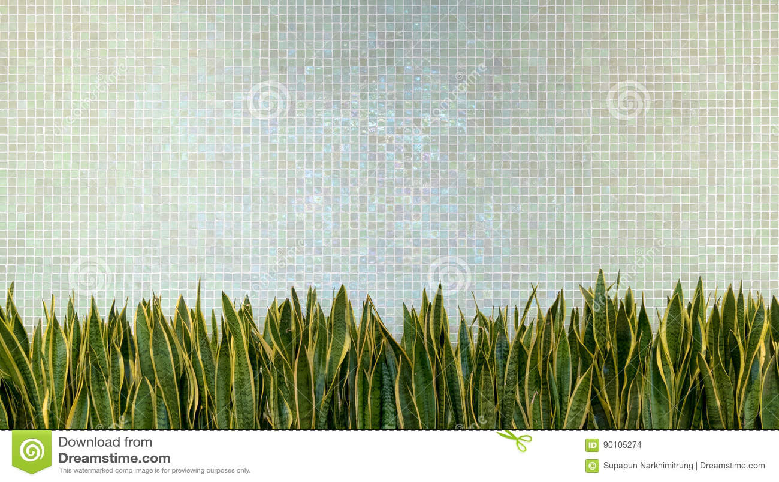 Πράσινο υπόβαθρο σύστασης μωσαϊκών πορσελάνης κεραμιδιών τοίχων με το πράσινο φυτό φύλλων όμορφη άνετη εκλεκτής ποιότητας εσωτερι