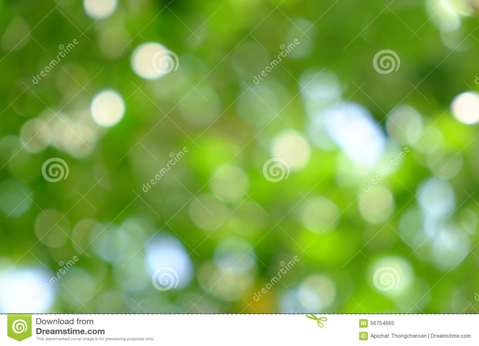 Πράσινο φυσικό υπόβαθρο από το δέντρο εστίασης ή bokeh