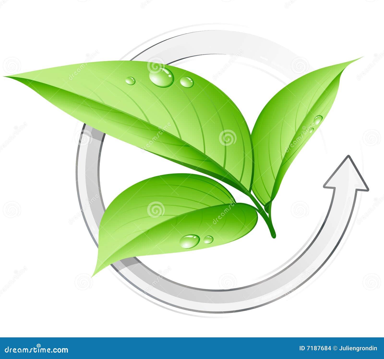 πράσινο φυτό έννοιας
