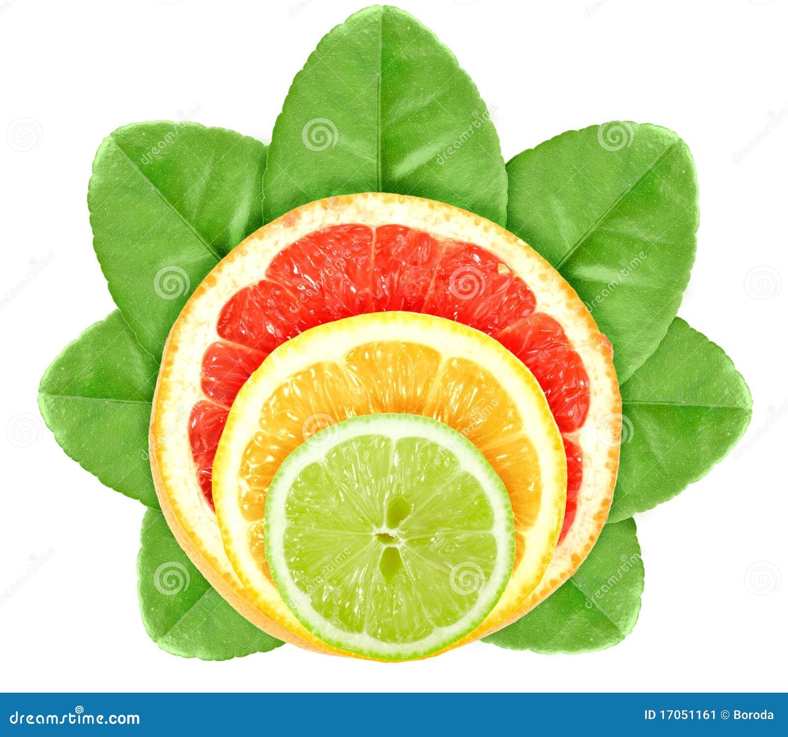 πράσινο φύλλο καρπών εσπε&rh