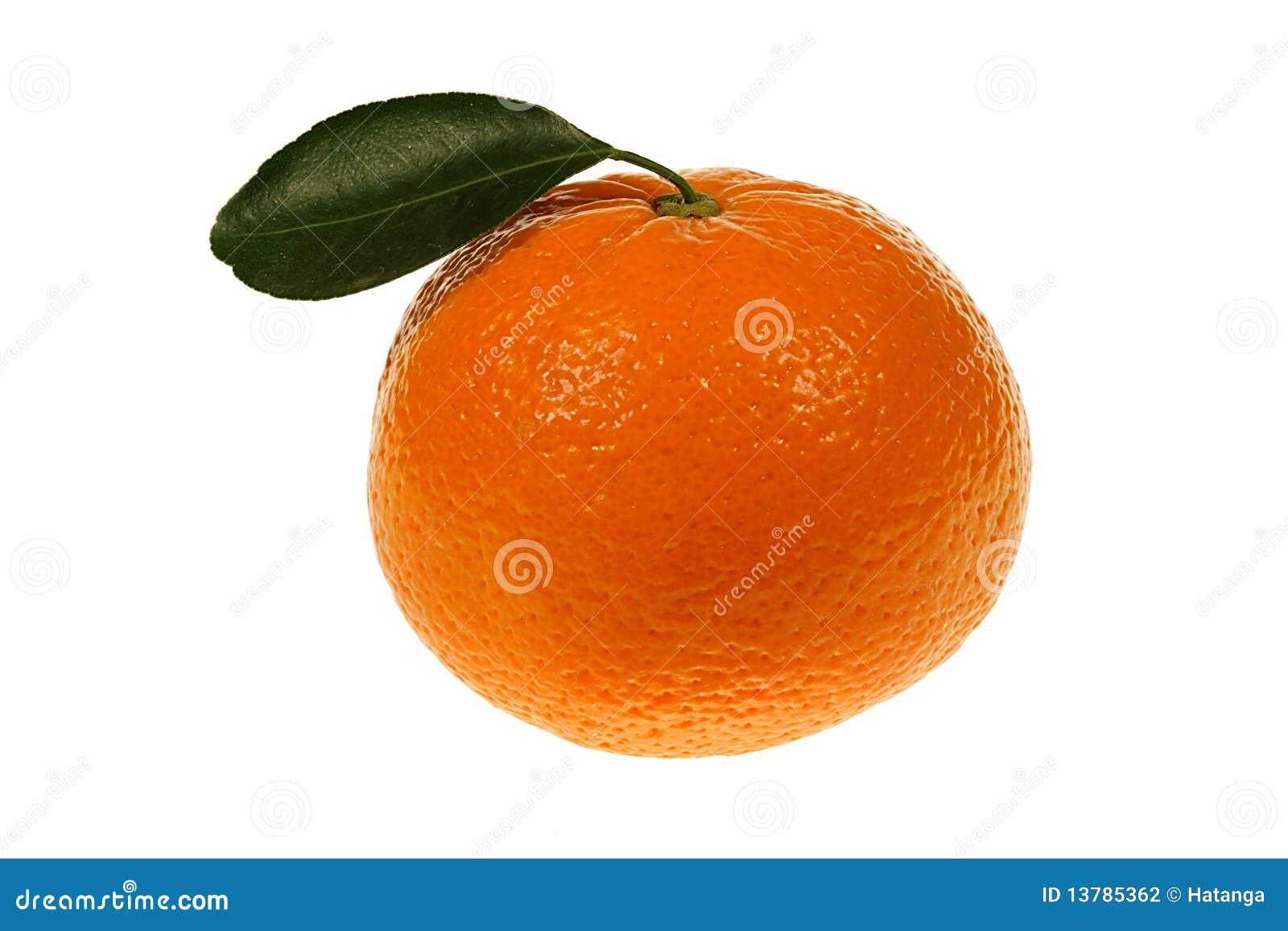 πράσινο tangerine φύλλων