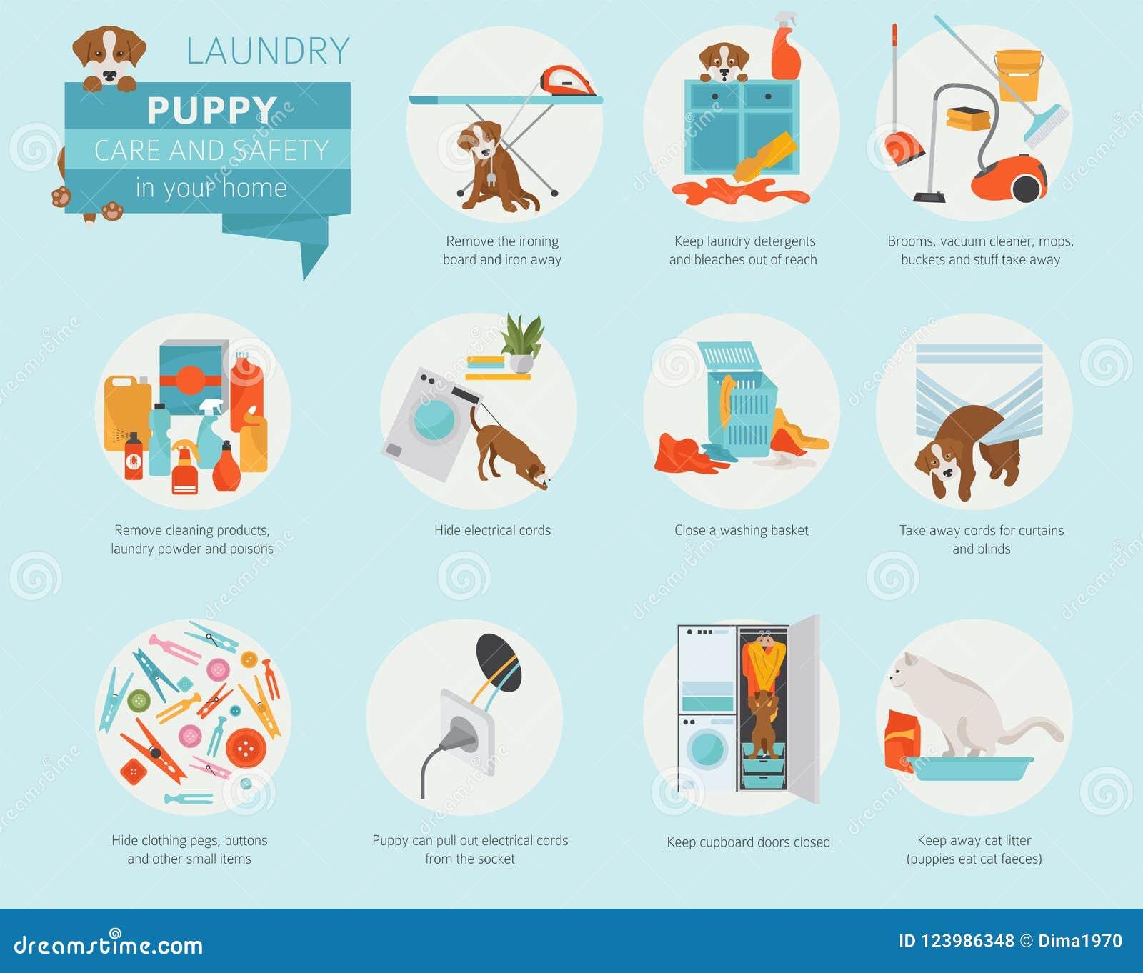 Προσοχή και ασφάλεια κουταβιών στο σπίτι σας Πλυντήριο Σκυλί της Pet που εκπαιδεύει μέσα