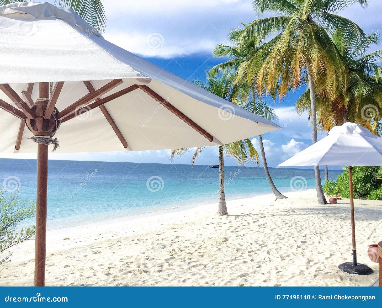 Πρόγευμα στην παραλία