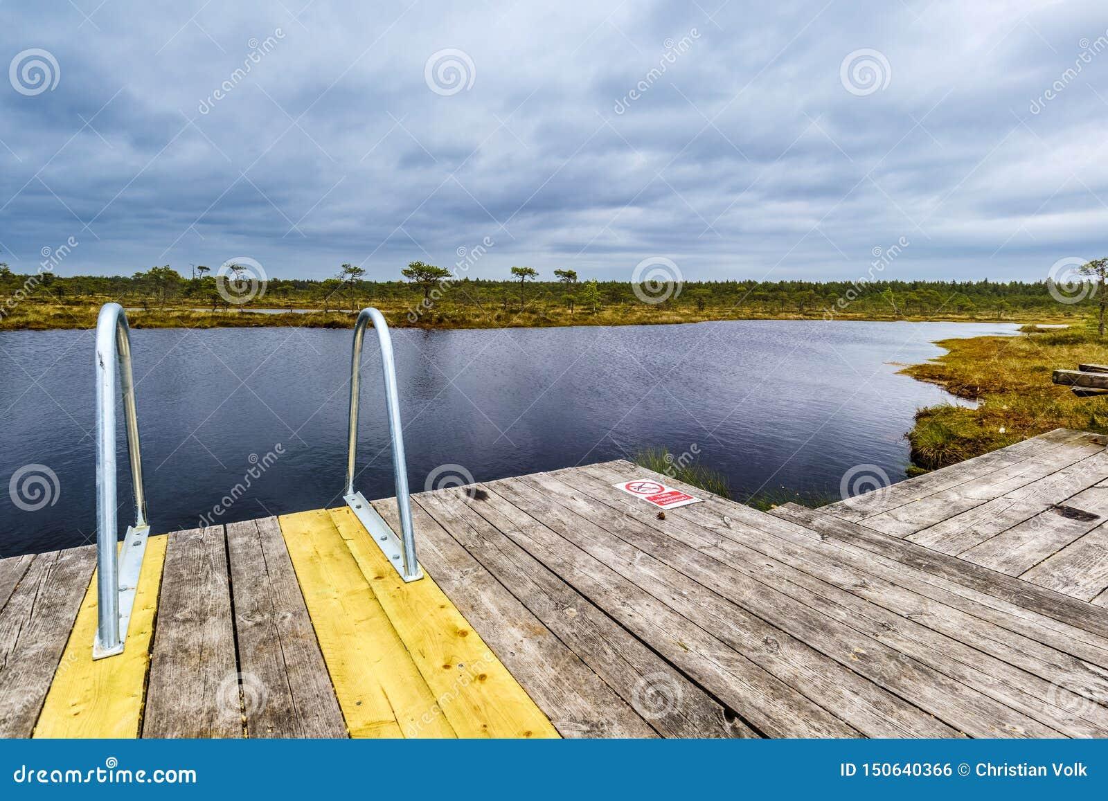 Πρόσβαση σε μια λίμνη στο έλος του εθνικού πάρκου Soomaa, Εσθονία