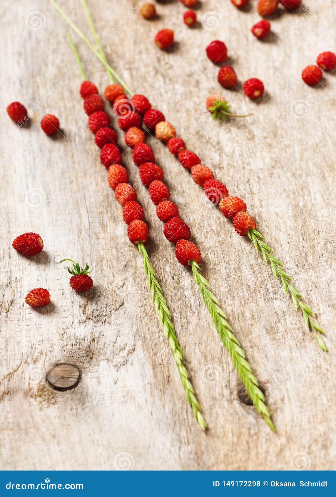 Πρόσφατα επιλεγμένο κόκκινο - οι εύγευστες άγριες φράουλες σε μια χλόη προέρχονται