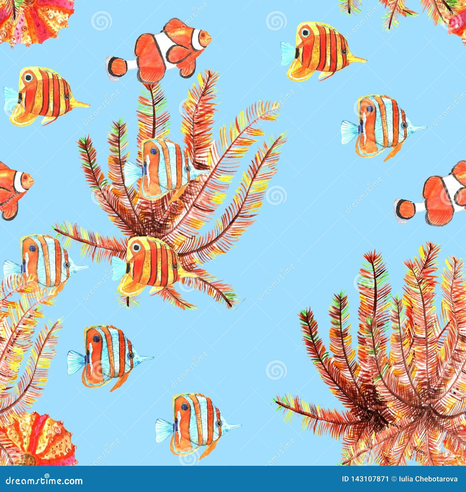 πρότυπο ψαριών άνευ ραφής Clownfish, butterflyfish watercolor