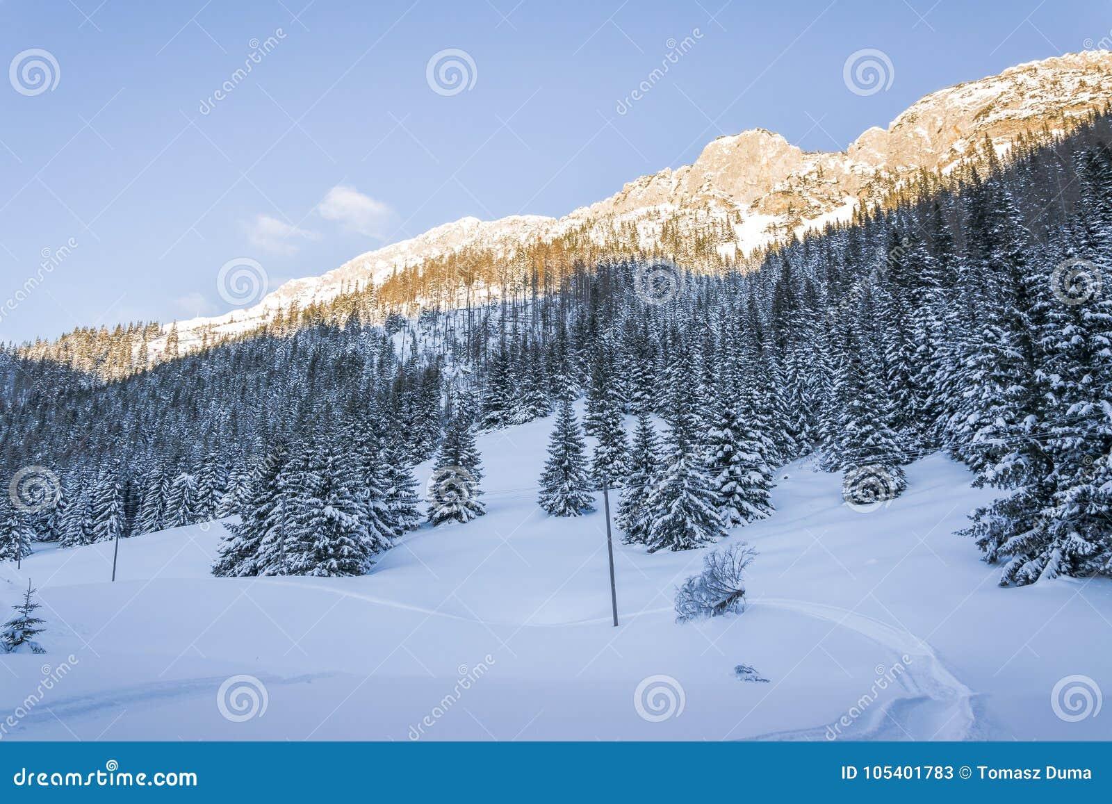 Download Πρώτο φως του ήλιου στα χιονώδη βουνά Στοκ Εικόνα - εικόνα από τοπίο, ταξίδι: 105401783