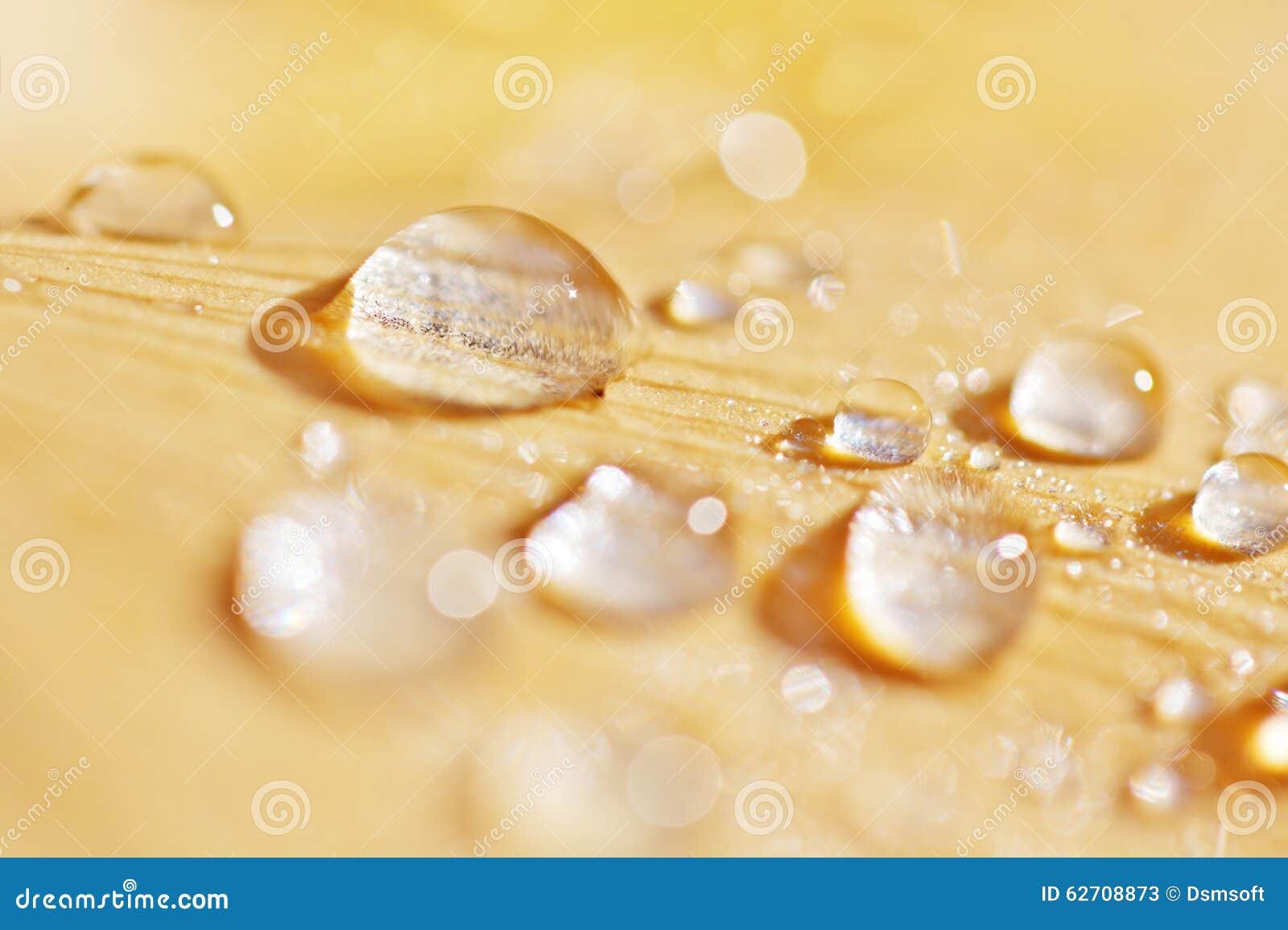 Πτώσεις νερού στο κίτρινο φύλλο