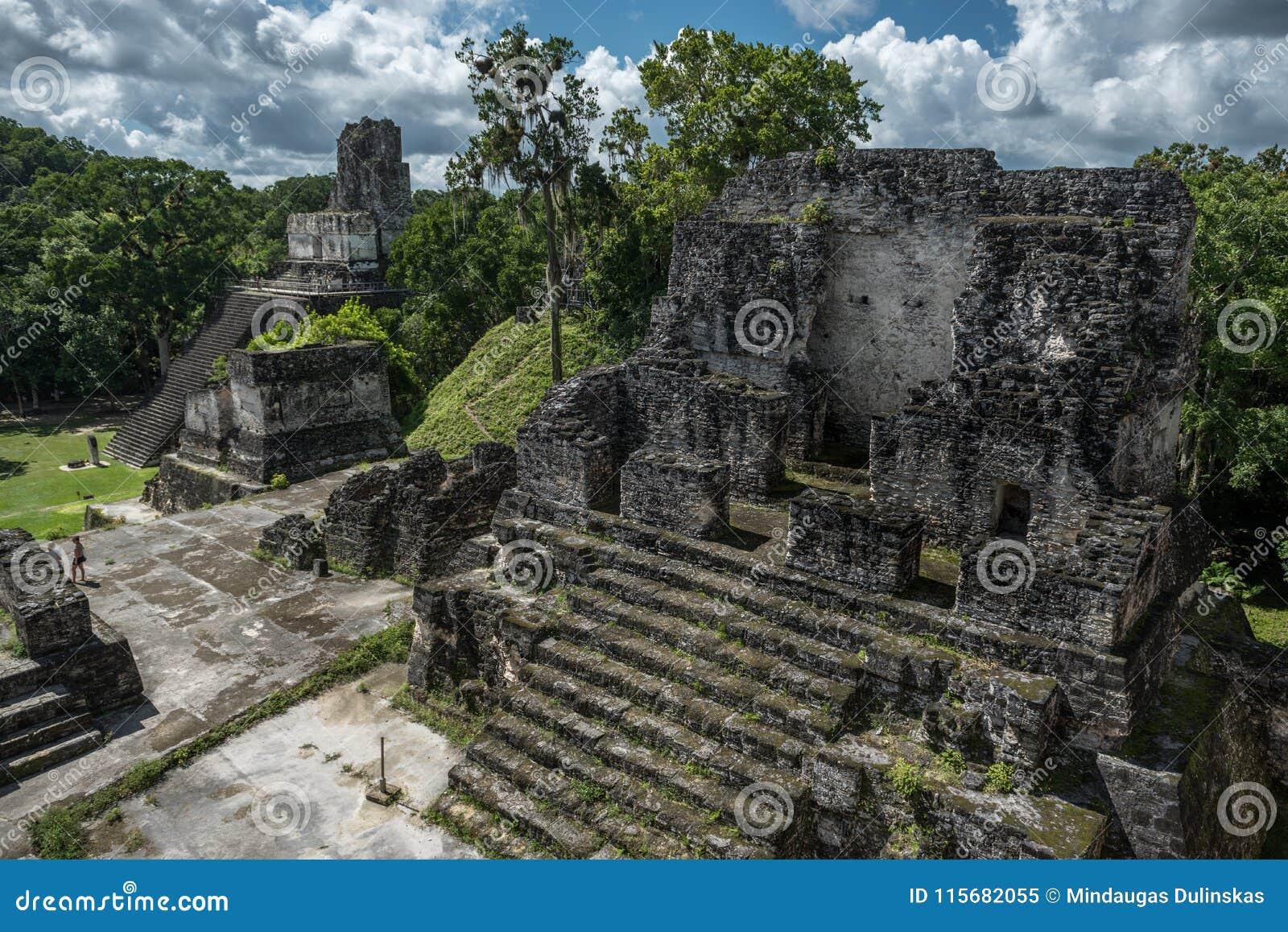 Πυραμίδα και ο ναός στο πάρκο Tikal Αντικείμενο επίσκεψης στη Γουατεμάλα με τους των Μάγια ναούς και τις εθιμοτυπικές καταστροφές