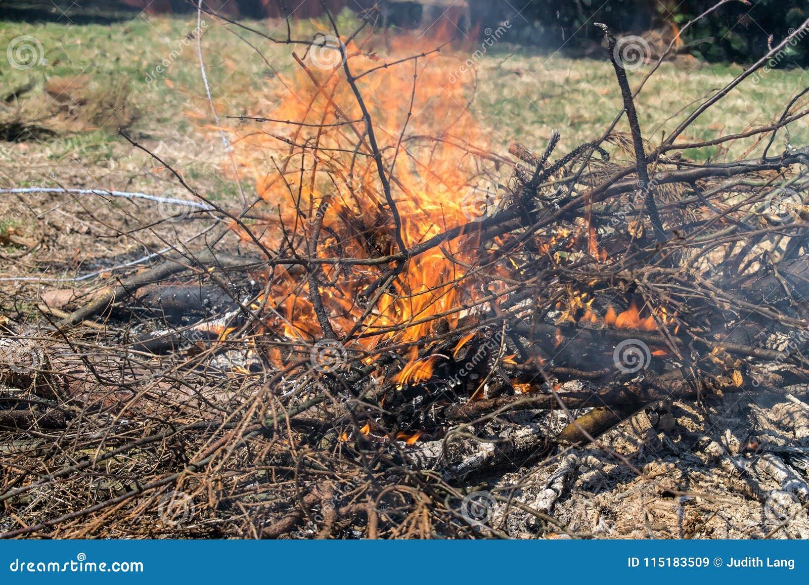 Πυρκαγιά θαμνότοπων σε ένα κατώφλι