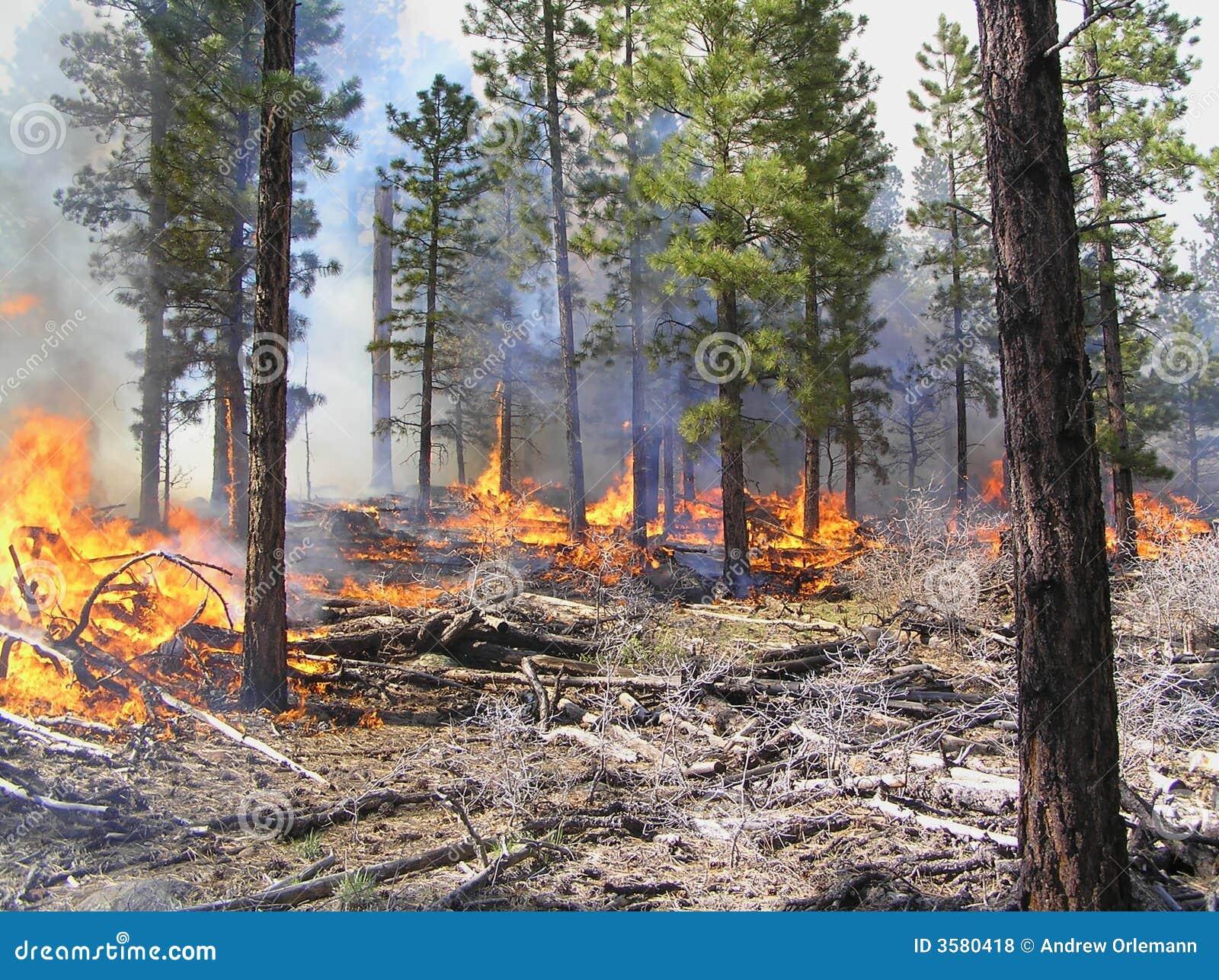 πυρκαγιά που ορίζεται