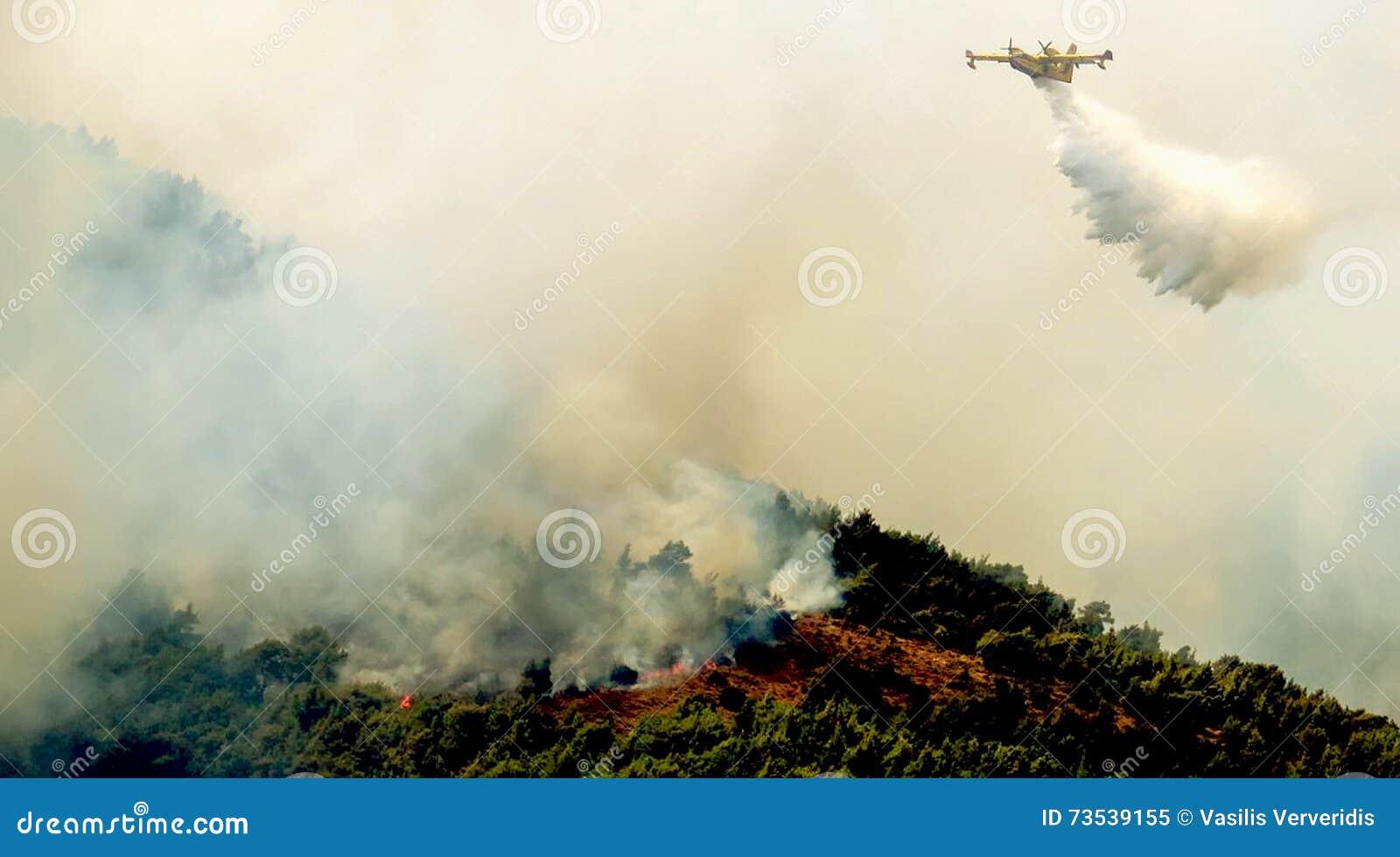 Πυρκαγιά στις δασικές περιοχές στη Βοιωτία στην κεντρική Ελλάδα