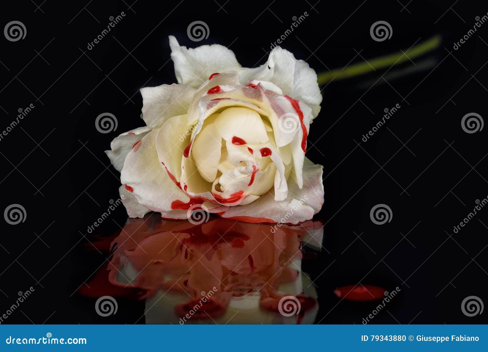Πυροβόλο όπλο N& x27  Τριαντάφυλλα ΙΙ